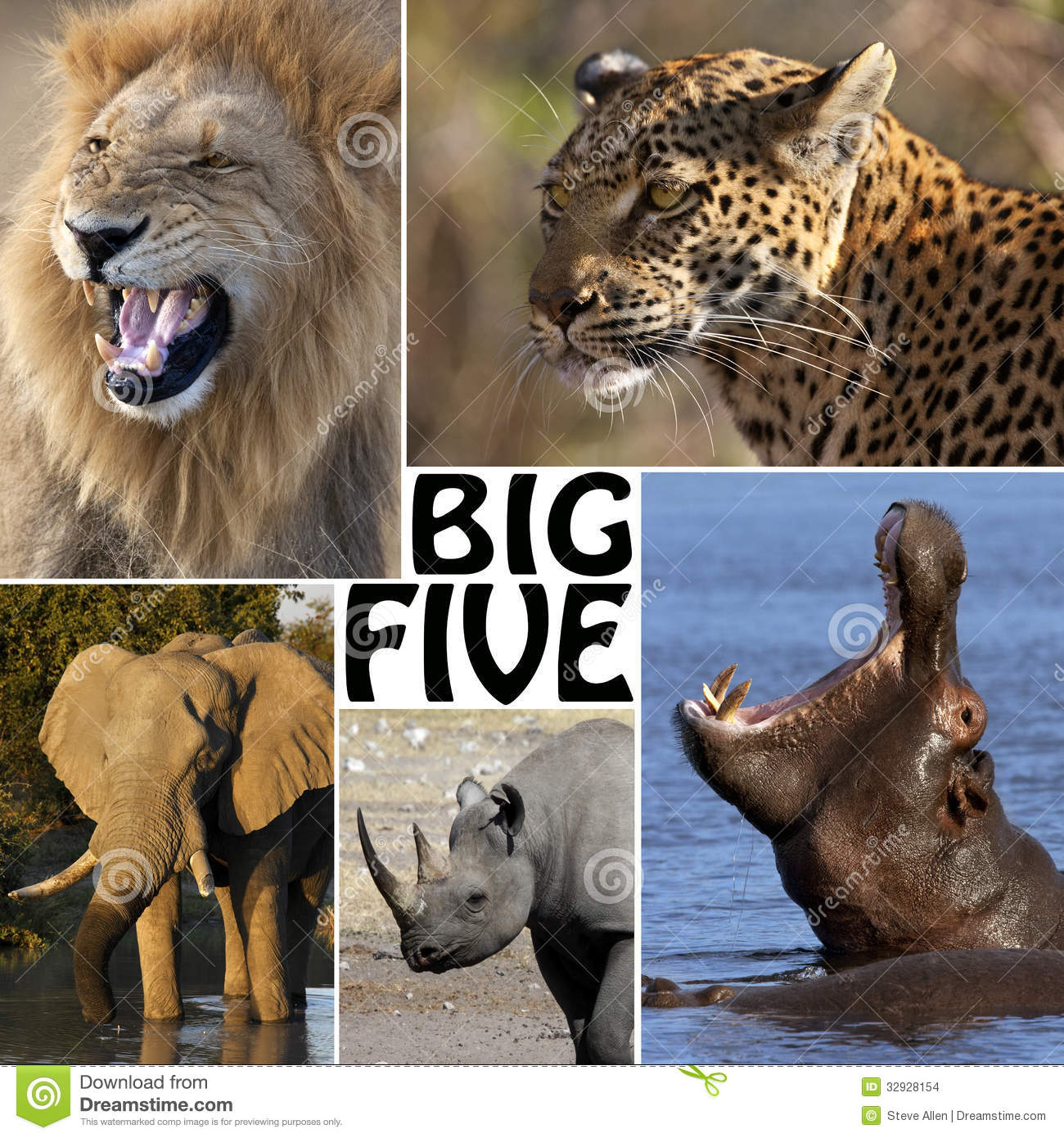 the big five Take this short test to learn how you score on the big five personality dimensions this online personality test is completely free, and offers instant, accurate results.