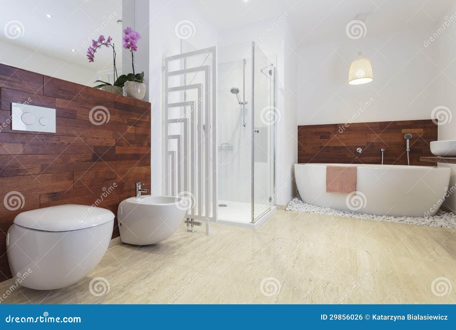 Bathroom stock photo. Image of inside, fixture, luxury - 29856026