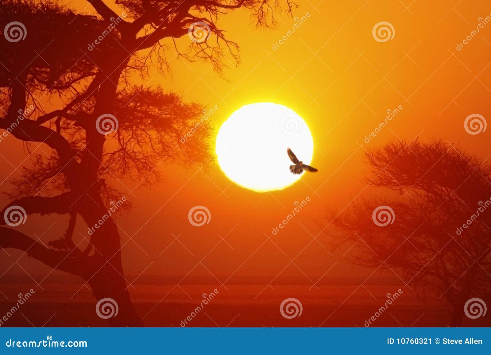 African Sunrise - Namibia