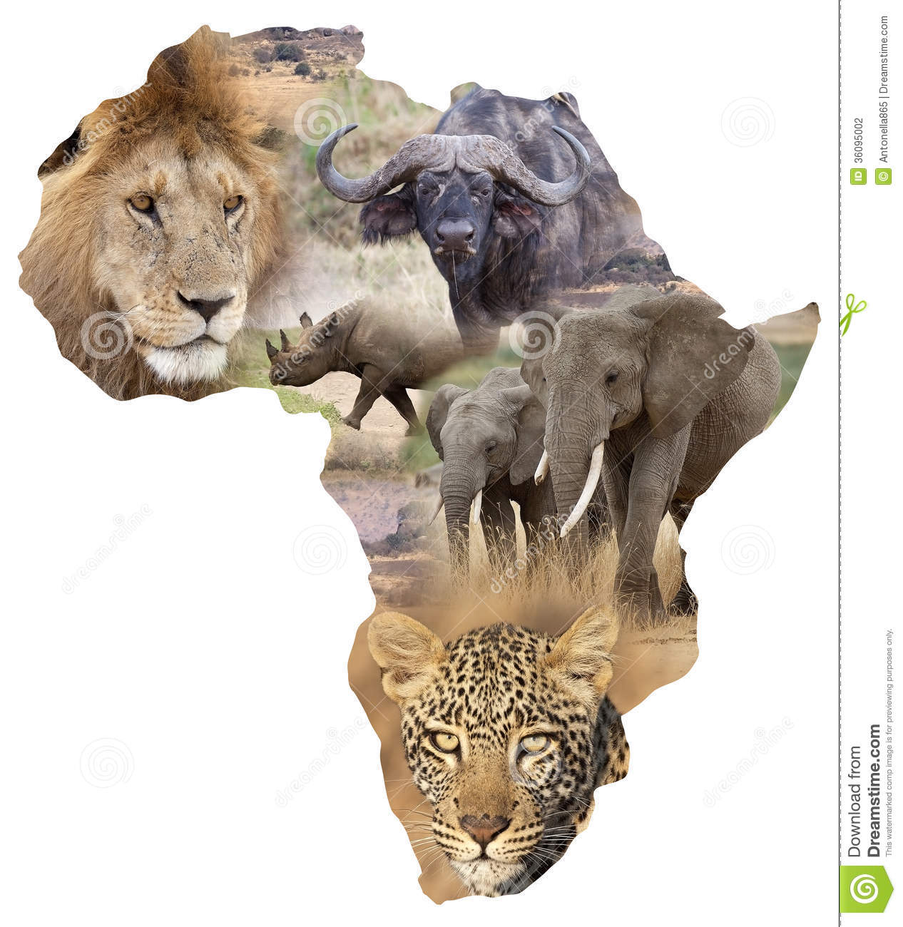 africa map photography