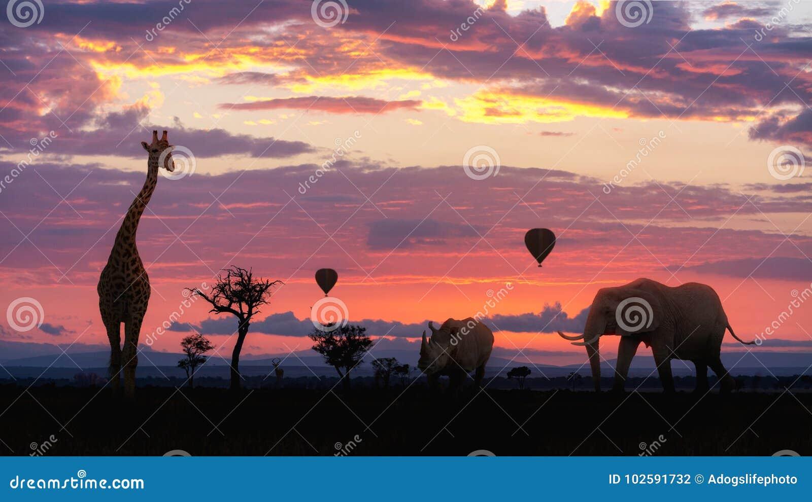 Africano Safari Colorful Sunrise With Animals