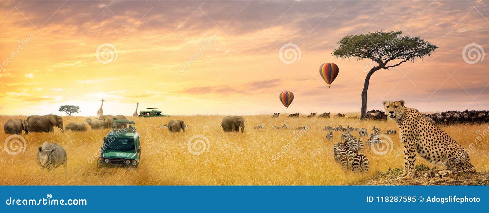 Africano Safari Scene Web Banner