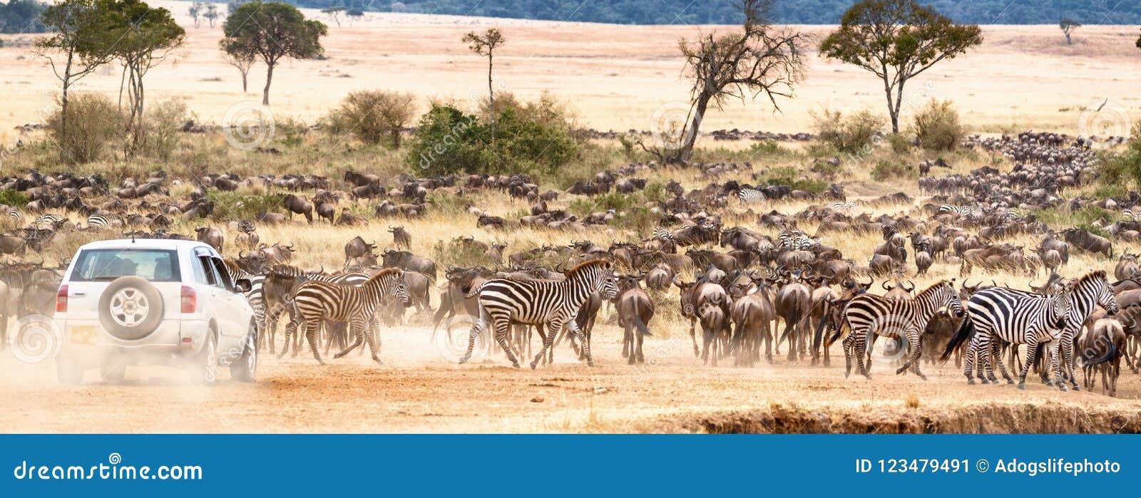 Africano Safari Self Game Drive