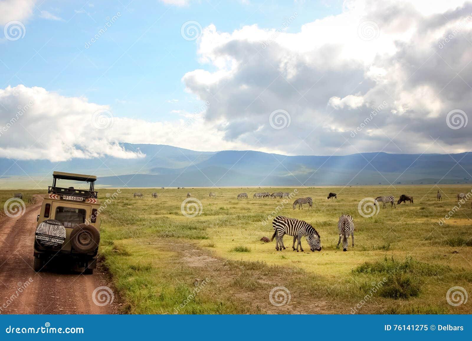 Afrika, Tanzania, Ngorongoro-Krater - Maart 2016: Jeepsafari