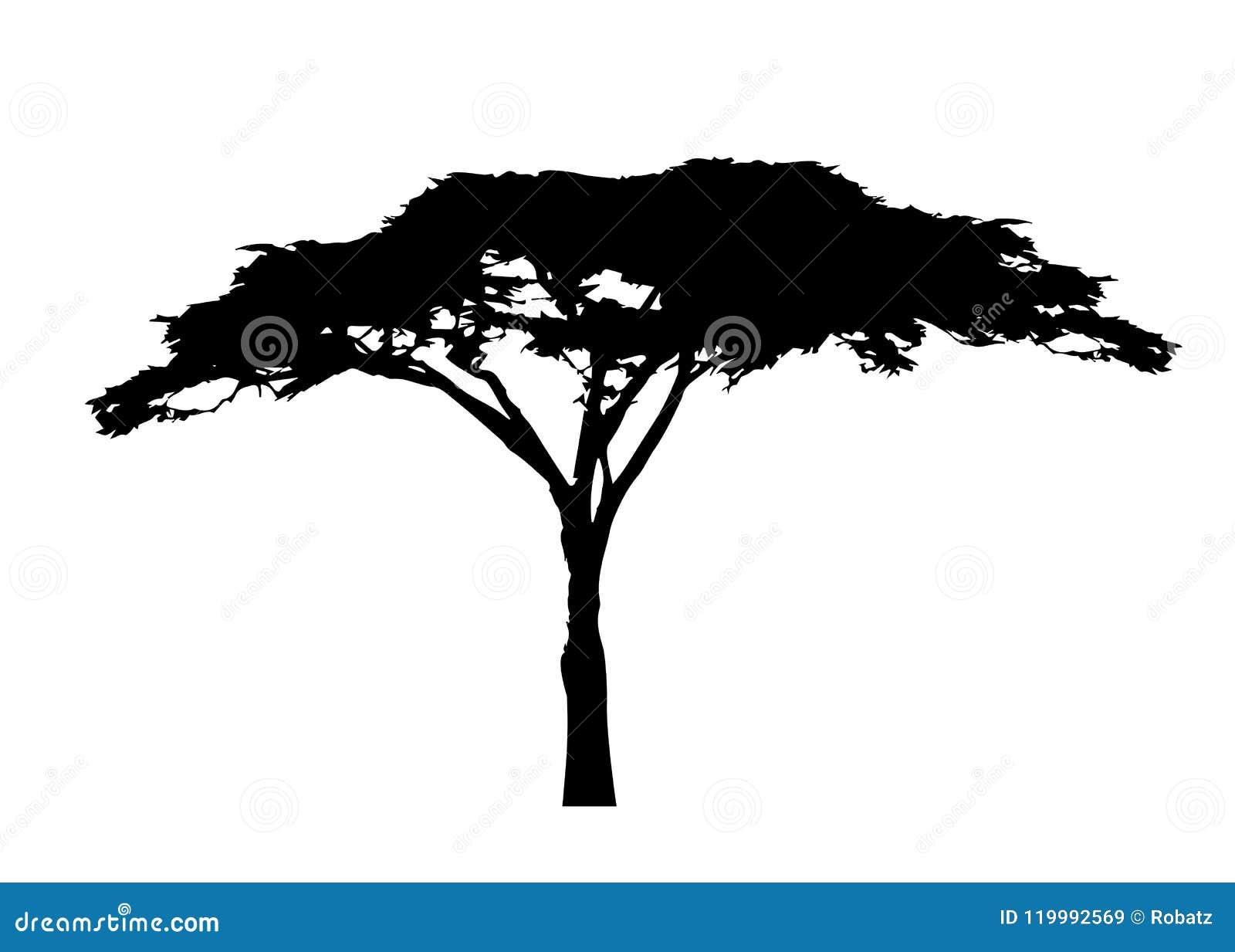Afrikaans boompictogram, het silhouet van de acaciaboom, geïsoleerde vector