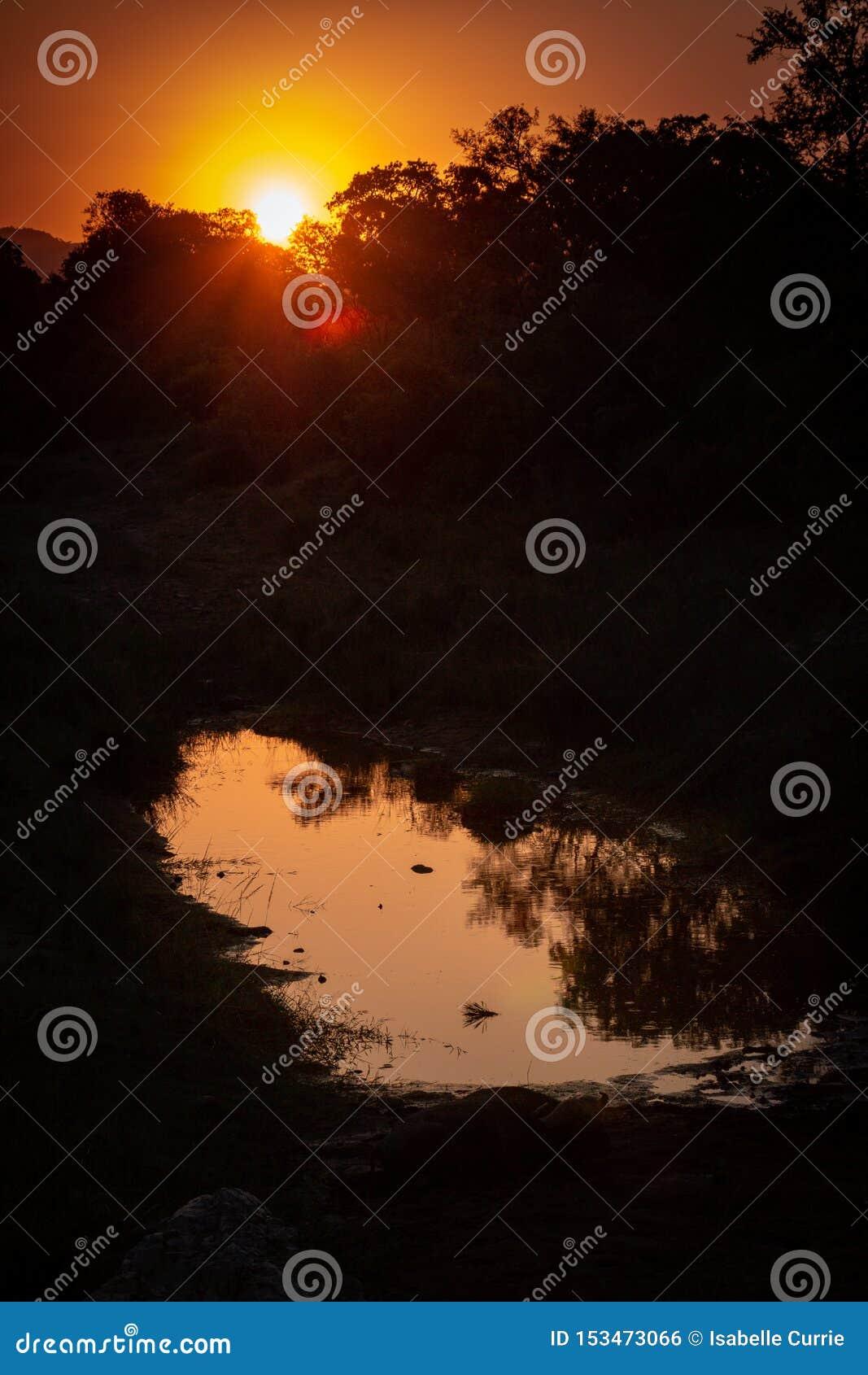 Afrikaanse zonsondergang op water