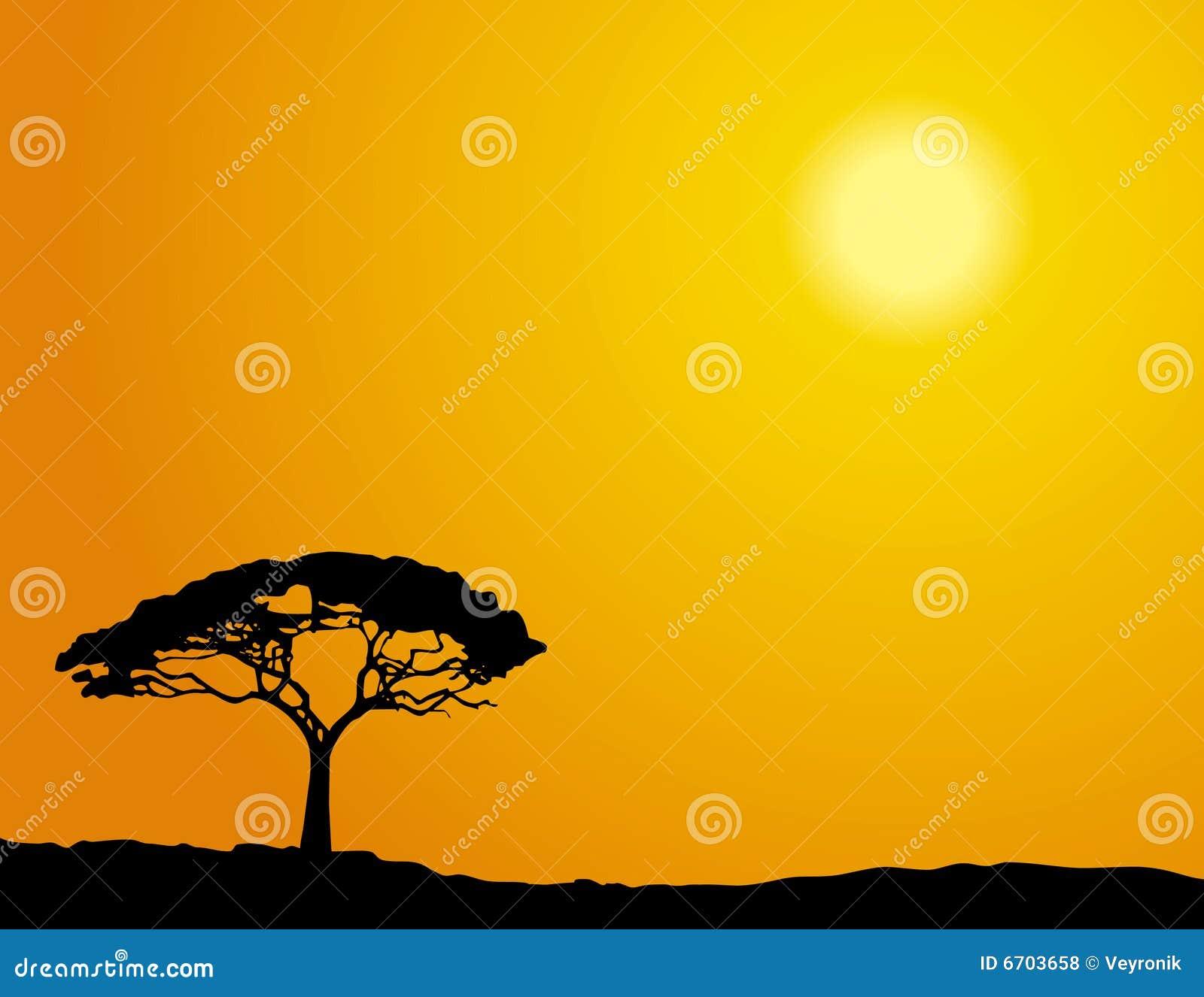 afrikanischer baum lizenzfreie stockfotos bild 6703658. Black Bedroom Furniture Sets. Home Design Ideas