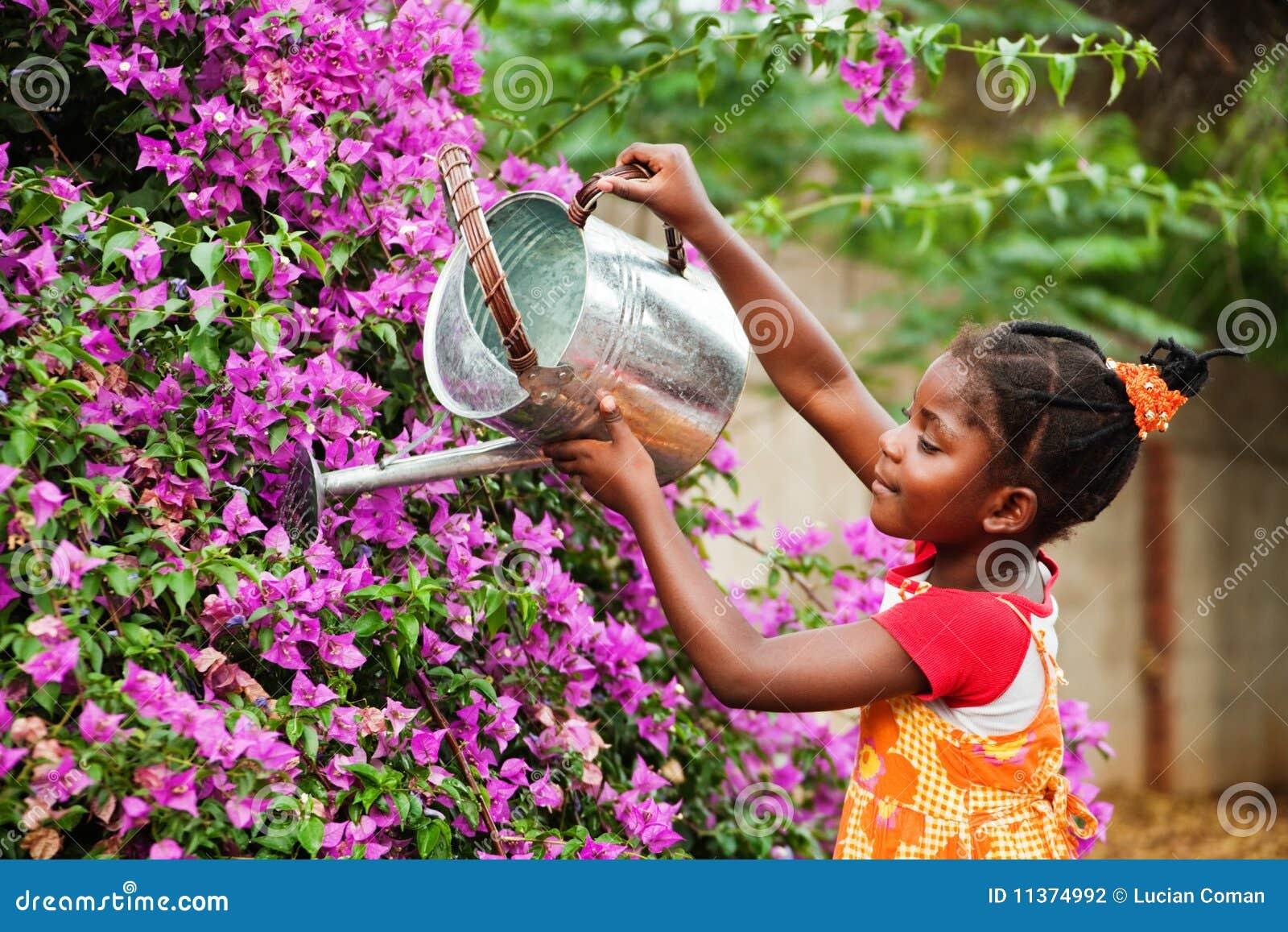 Afrykańska ogrodniczka