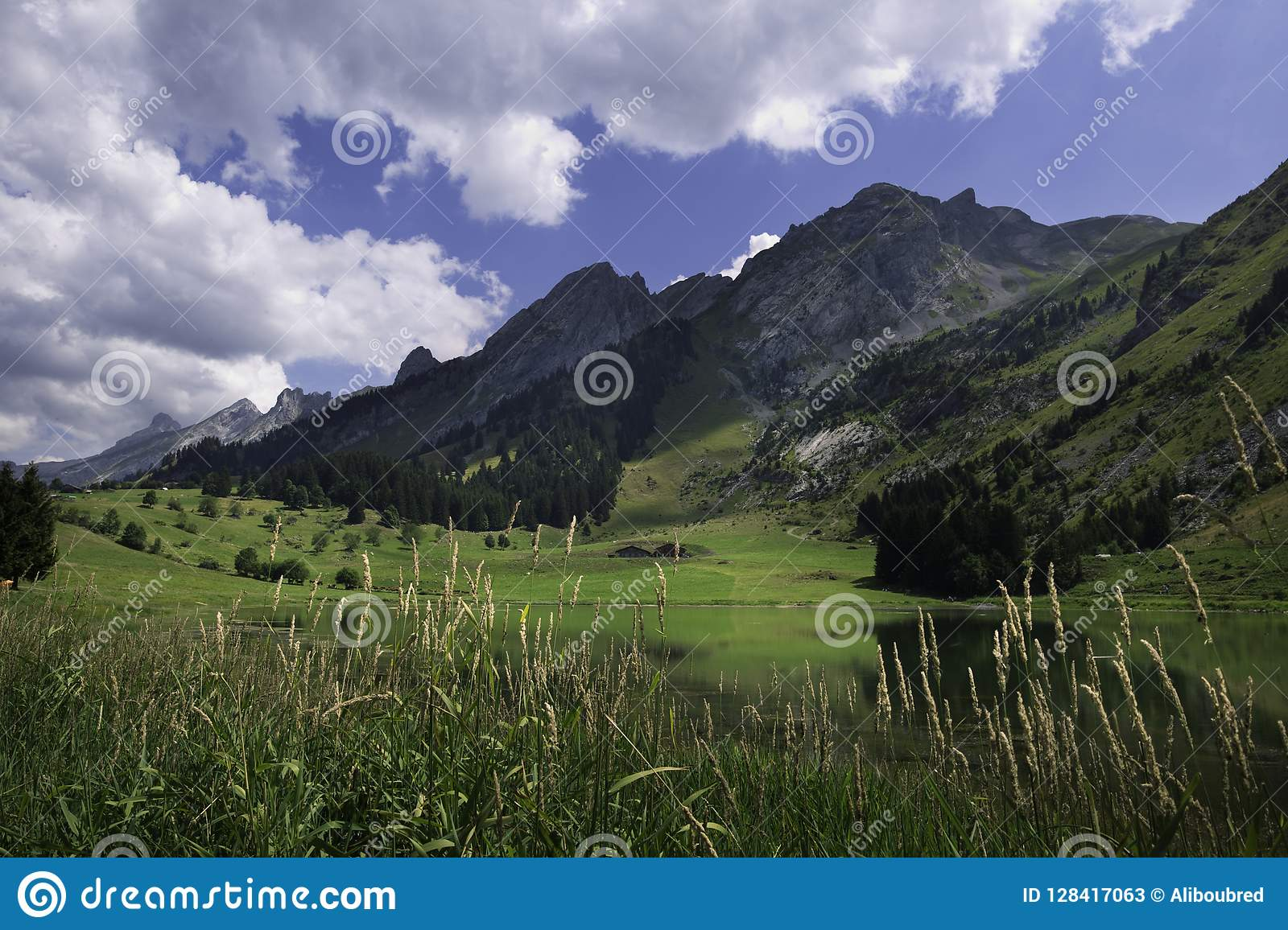 Afternoon in the Aravis Mountains