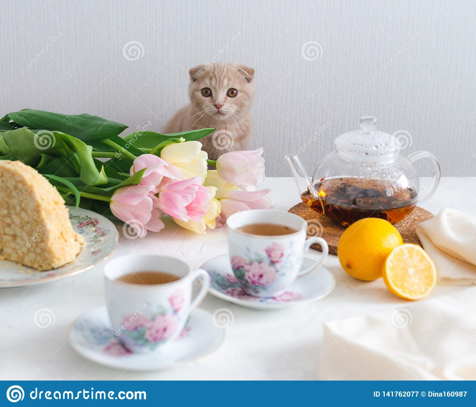 Afternoon tea with cat. Cups of tea, lemon, teapot, cake and flowers on the background