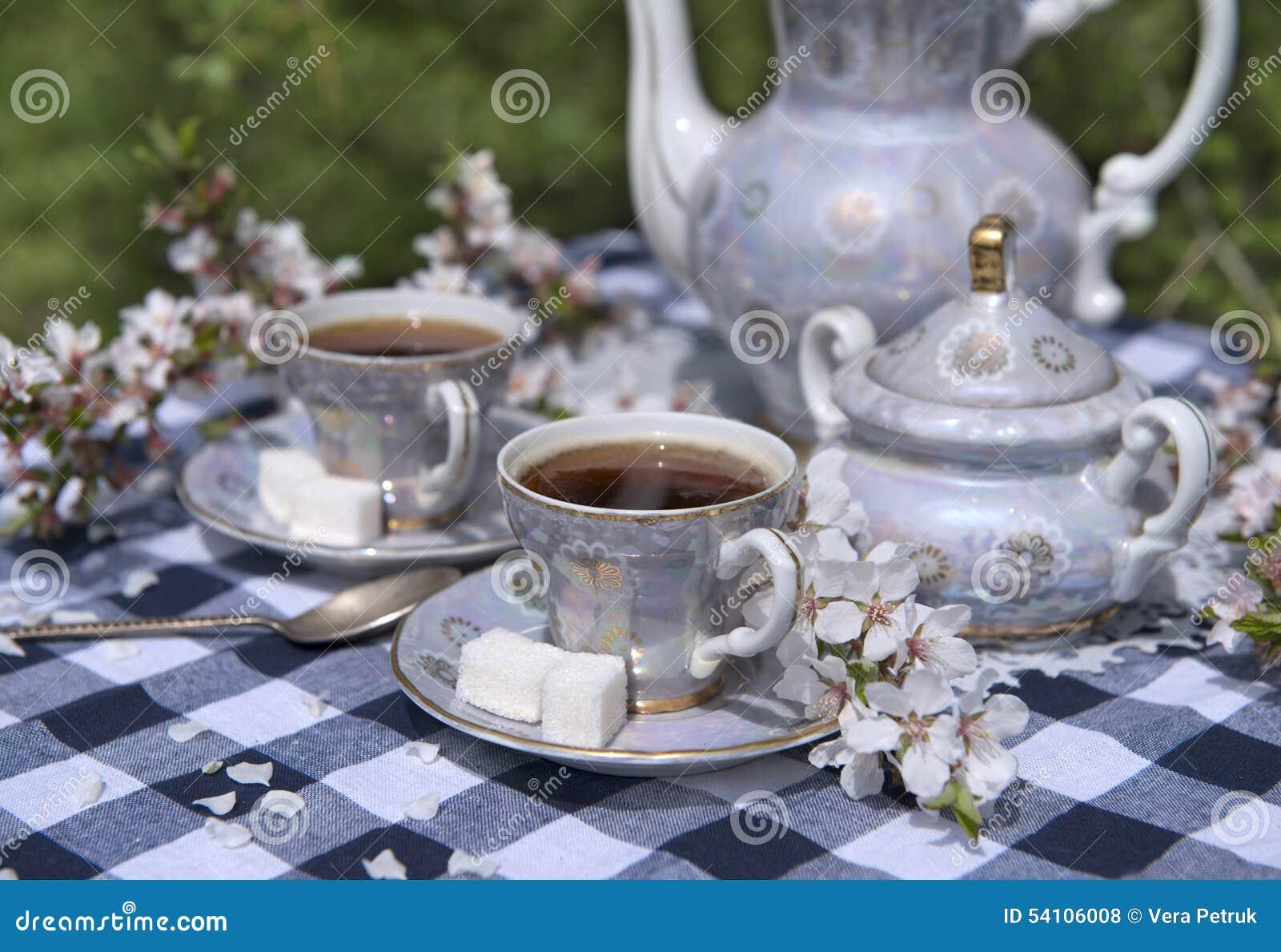 afternoon tea in spring garden stock photo image of grandmother breakfast 54106008. Black Bedroom Furniture Sets. Home Design Ideas