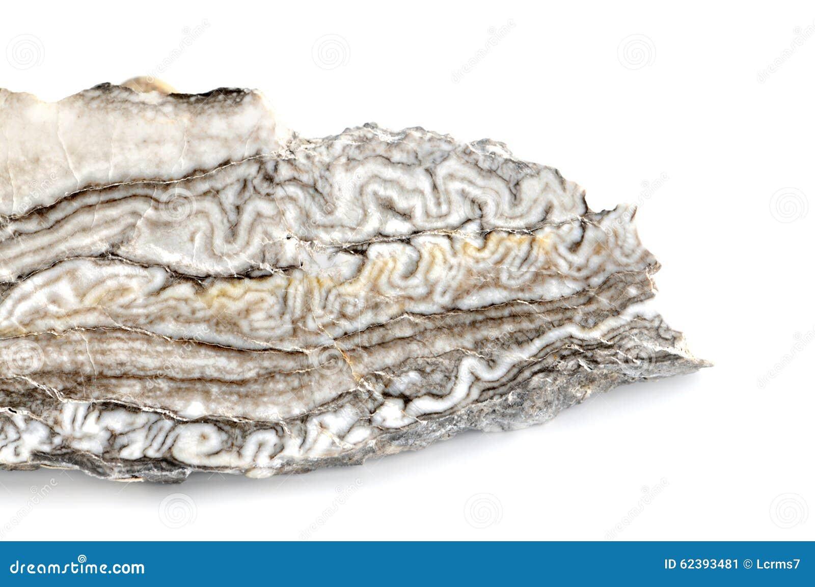 Agate grise blanche d albâtre