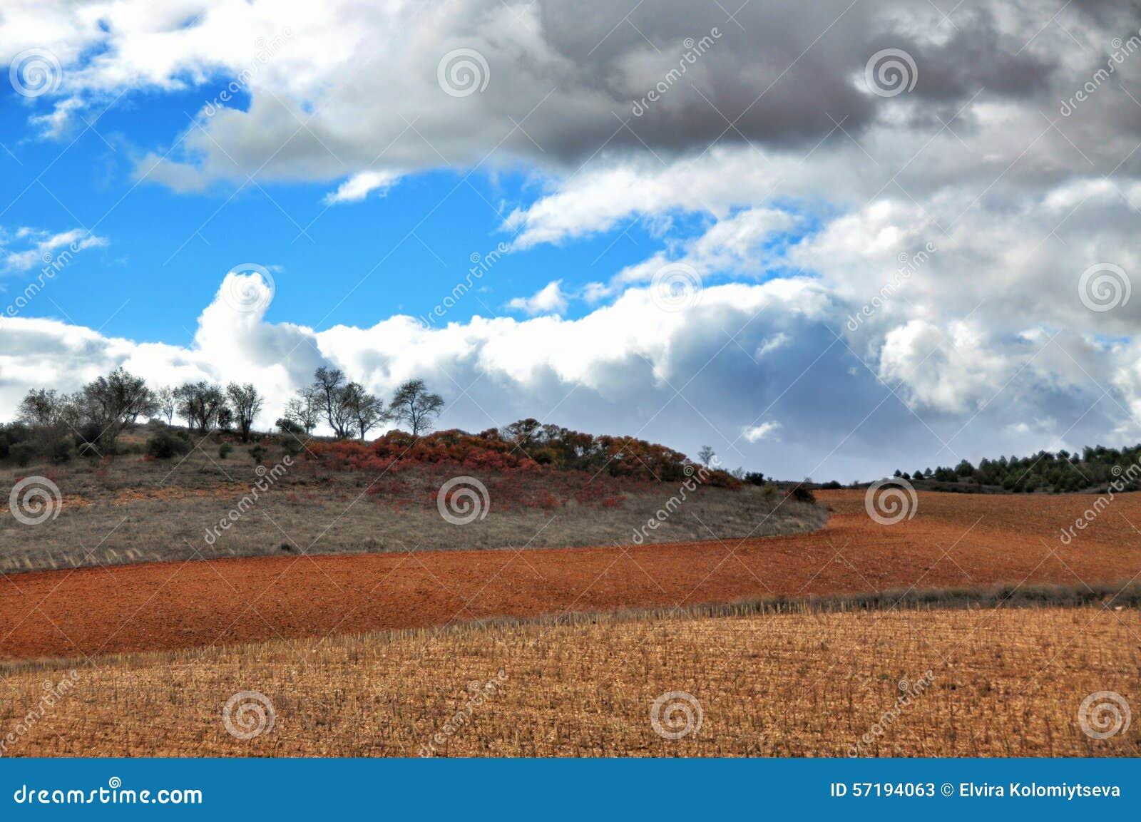 Agawy Almeria Andalusia cabo de Gata pustynnych krajobrazowych gór natury blisko parka naturalna roślina hiszpańska