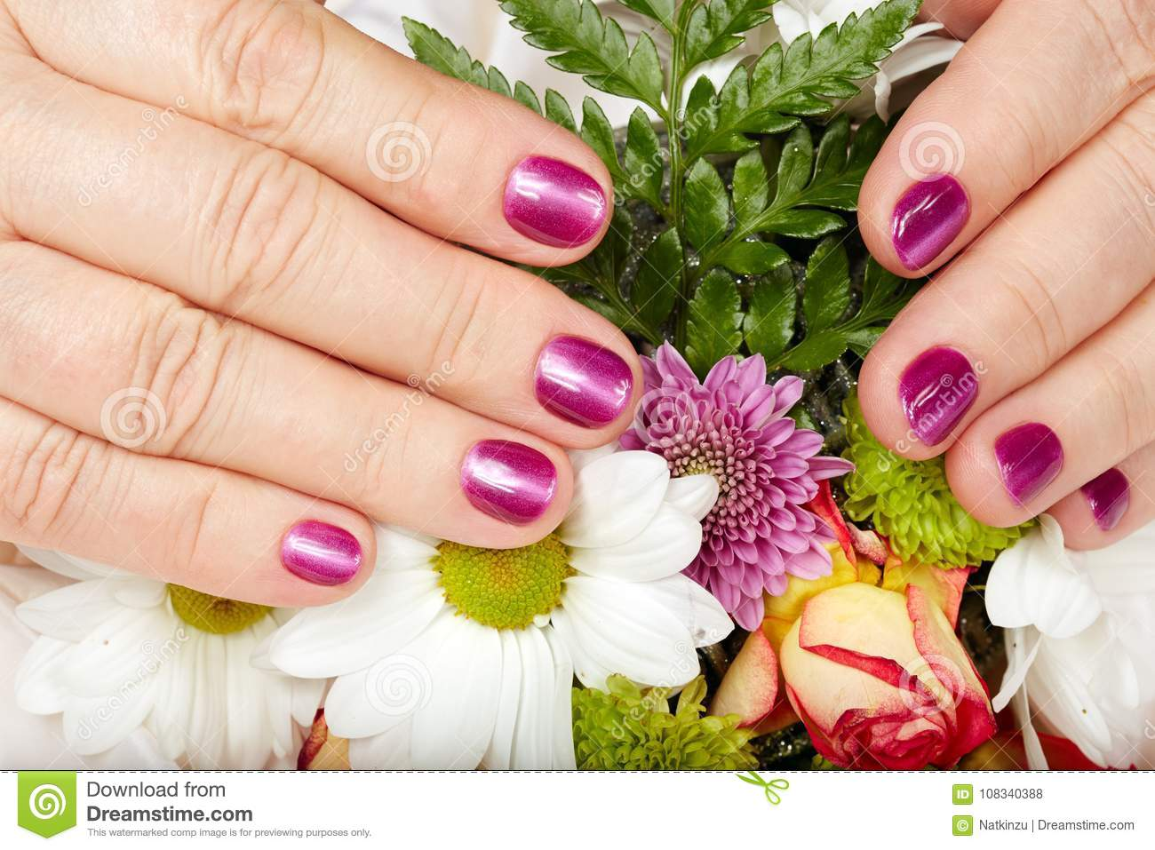 Age manicure for senior woman hands with pink nails stock photo download age manicure for senior woman hands with pink nails stock photo image izmirmasajfo