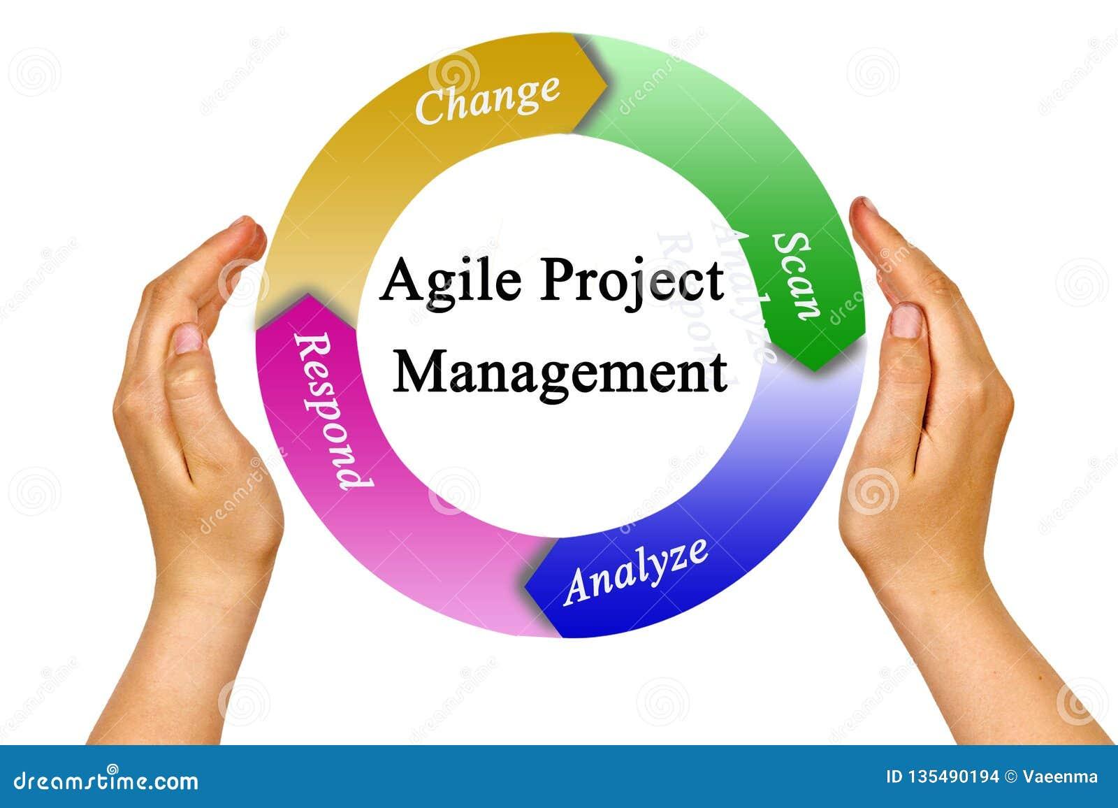 Agile Management agile project management stock photo. image of respond