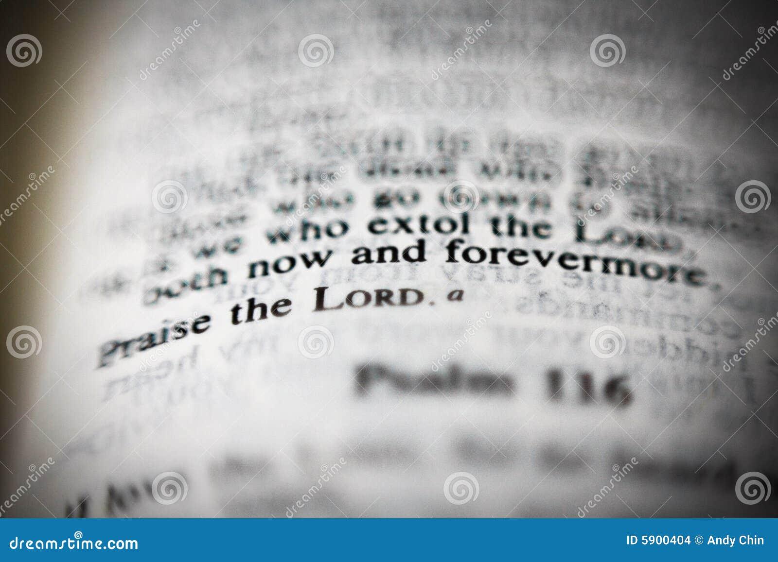 Agora e para sempre