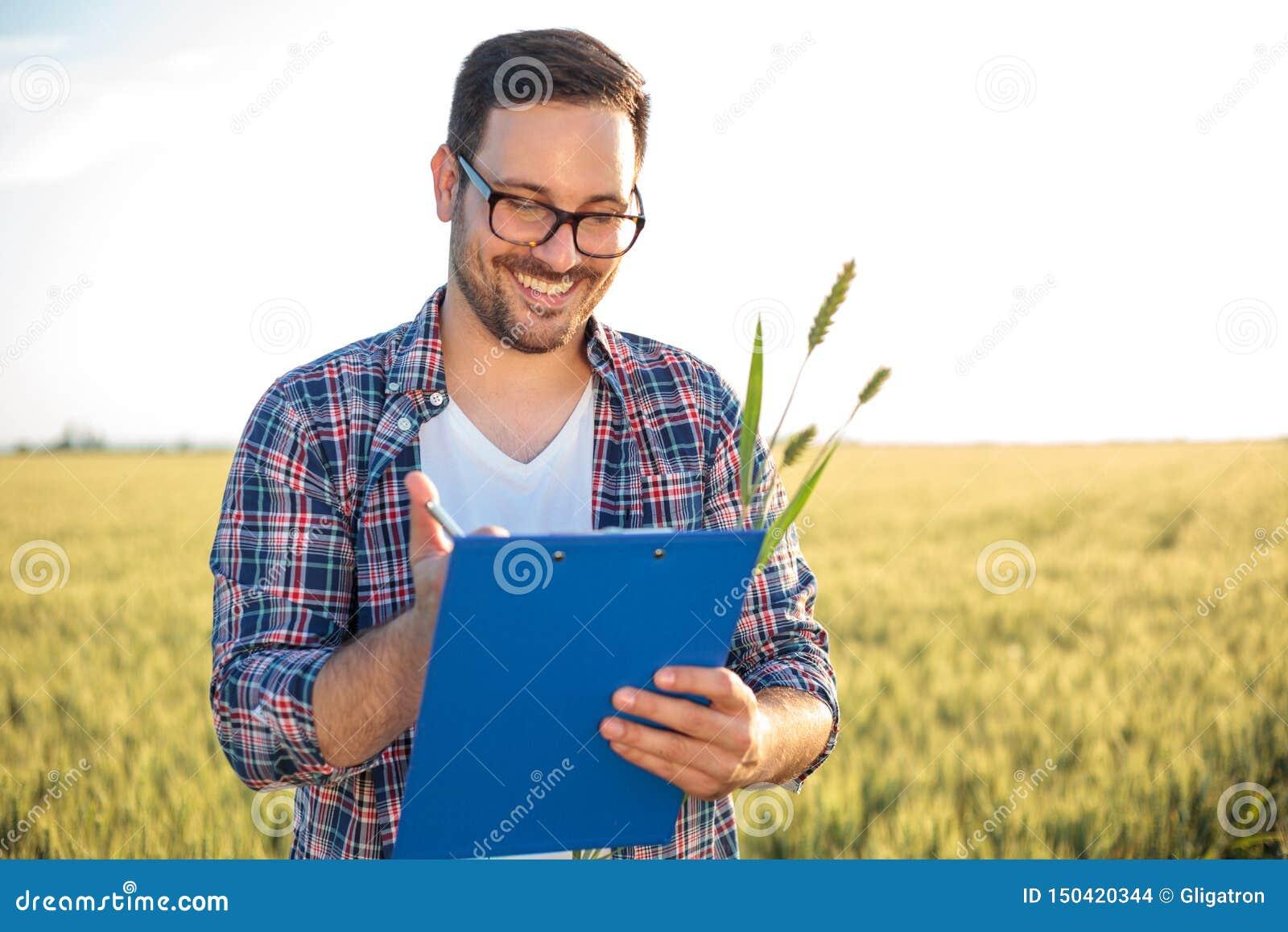 Agrônomo ou fazendeiro novo de sorriso que inspecionam o campo de trigo antes da colheita, redigindo dados a uma prancheta