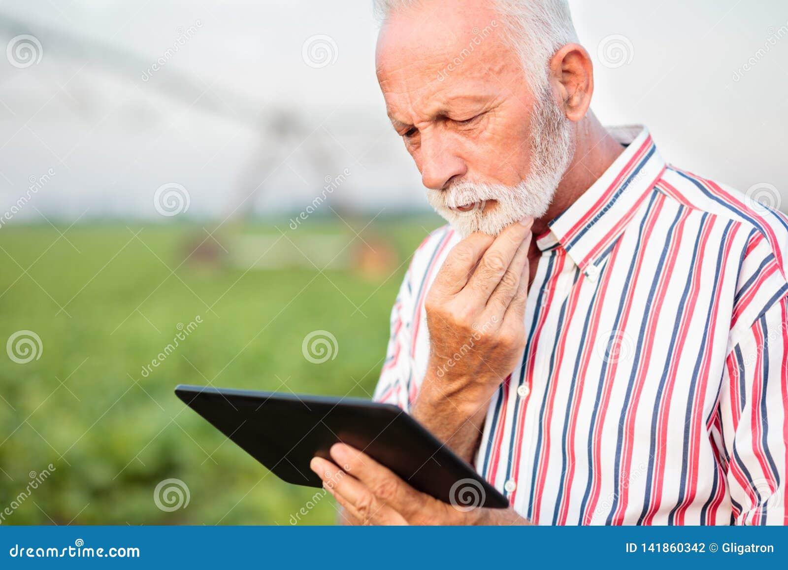 Agrônomo ou fazendeiro superior sério que contemplam o quando usando uma tabuleta no campo do feijão de soja Sistema de irrigação