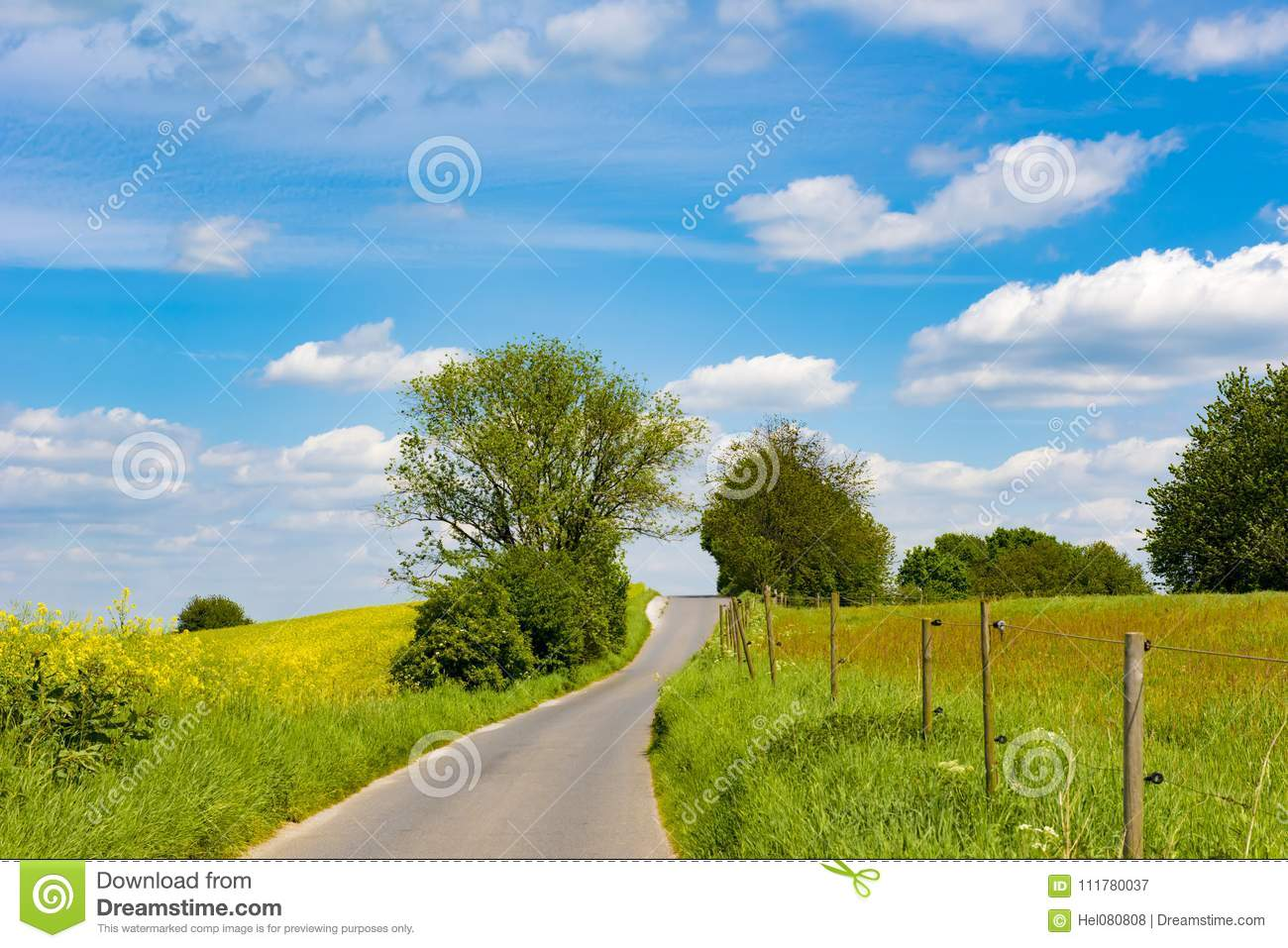 Agrarian fields and meadows with curved path, rural landscape in spring