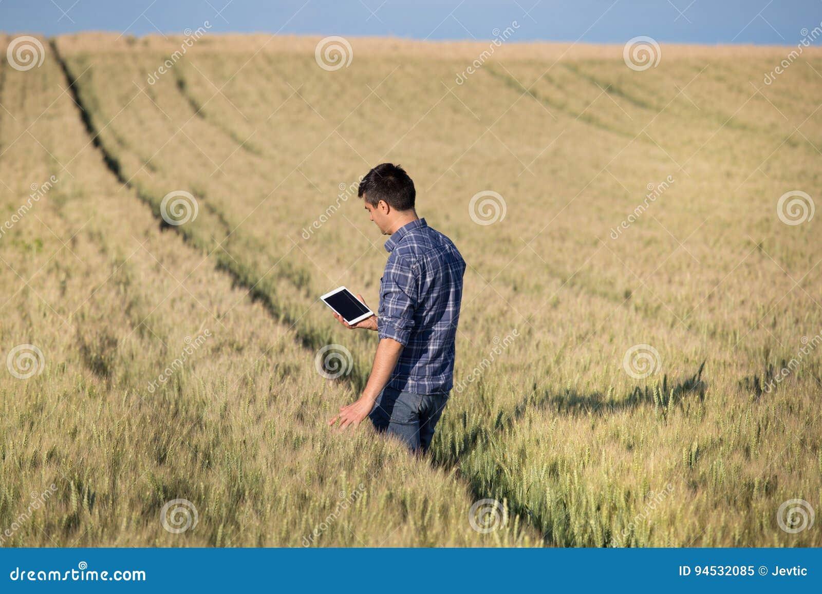 Agricoltore con la compressa nel campo