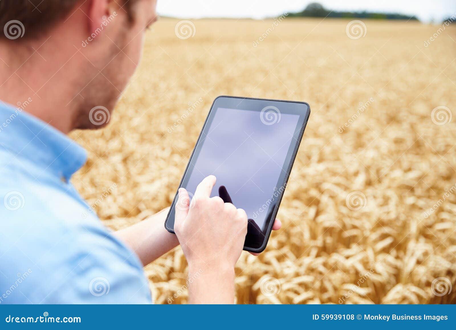 Agricoltore Using Digital Tablet nel campo di grano