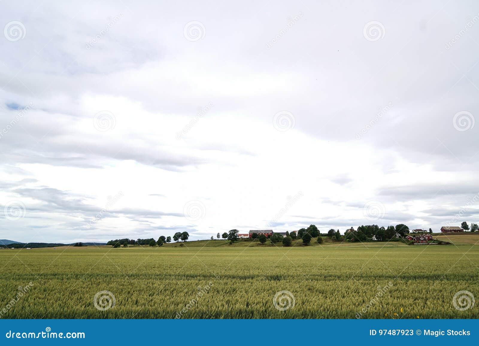 Agricoltura in Norvegia