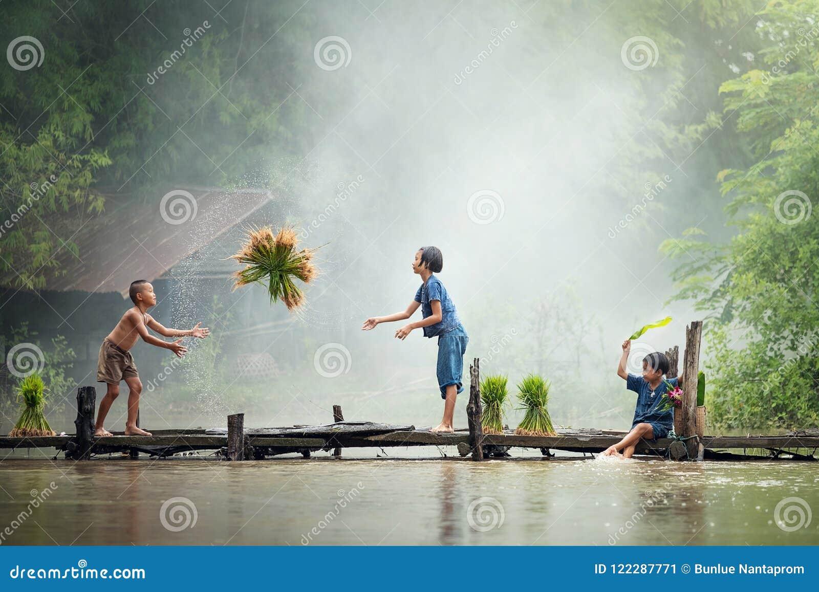 Agriculteur asiatique d enfants sur la croix de riz le pont en bois avant le g