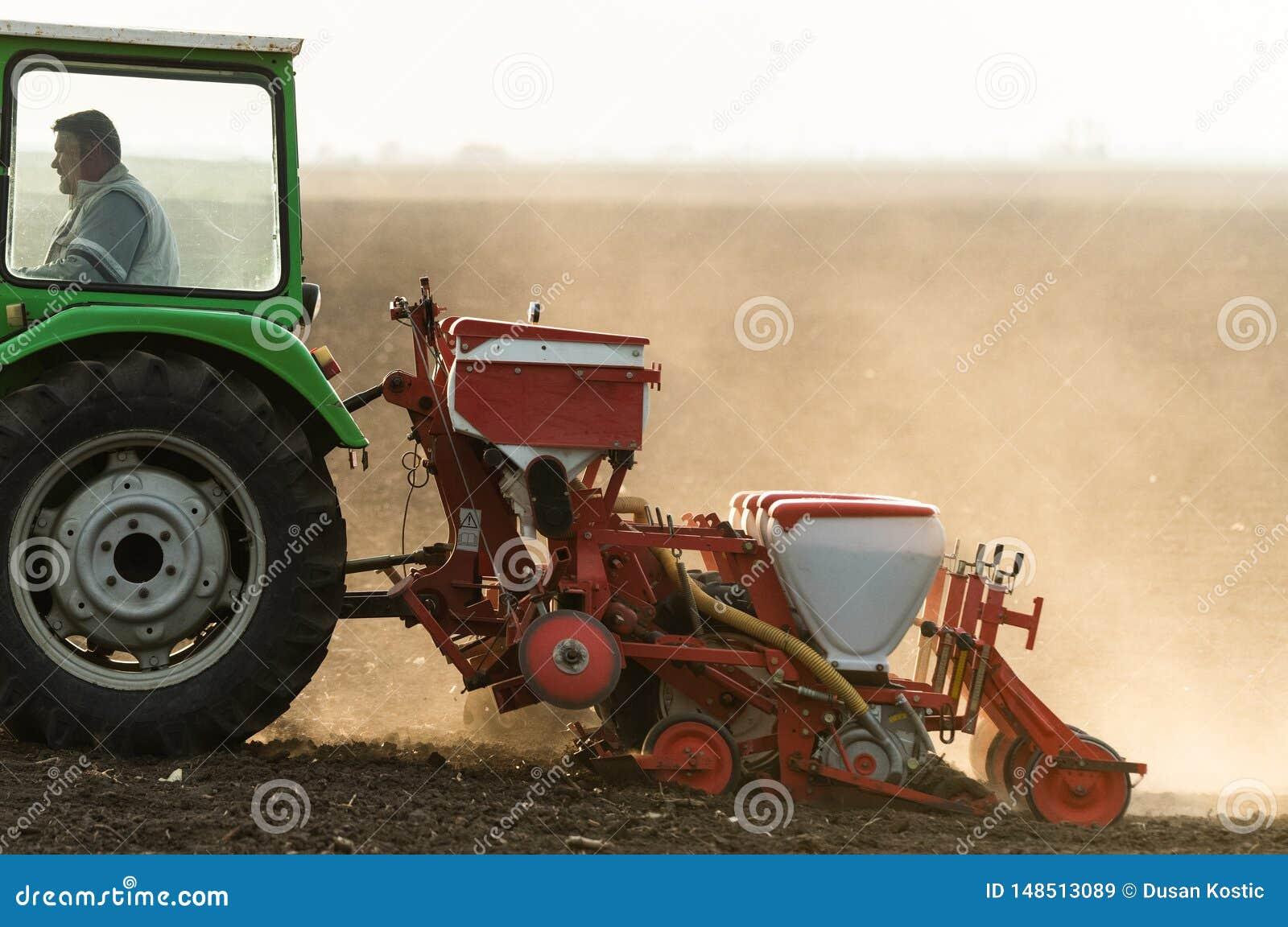 Agriculteur avec le tracteur semant des cultures de soja au champ agricole