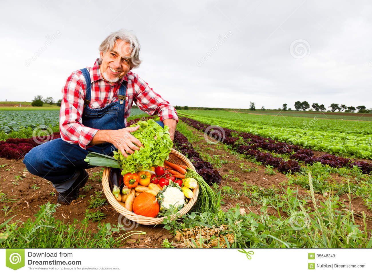 Agriculteur Standing In Front Of His Field