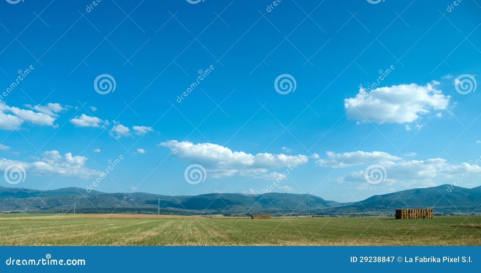 Download Agricultura imagem de stock. Imagem de paisagem, campo - 29238847