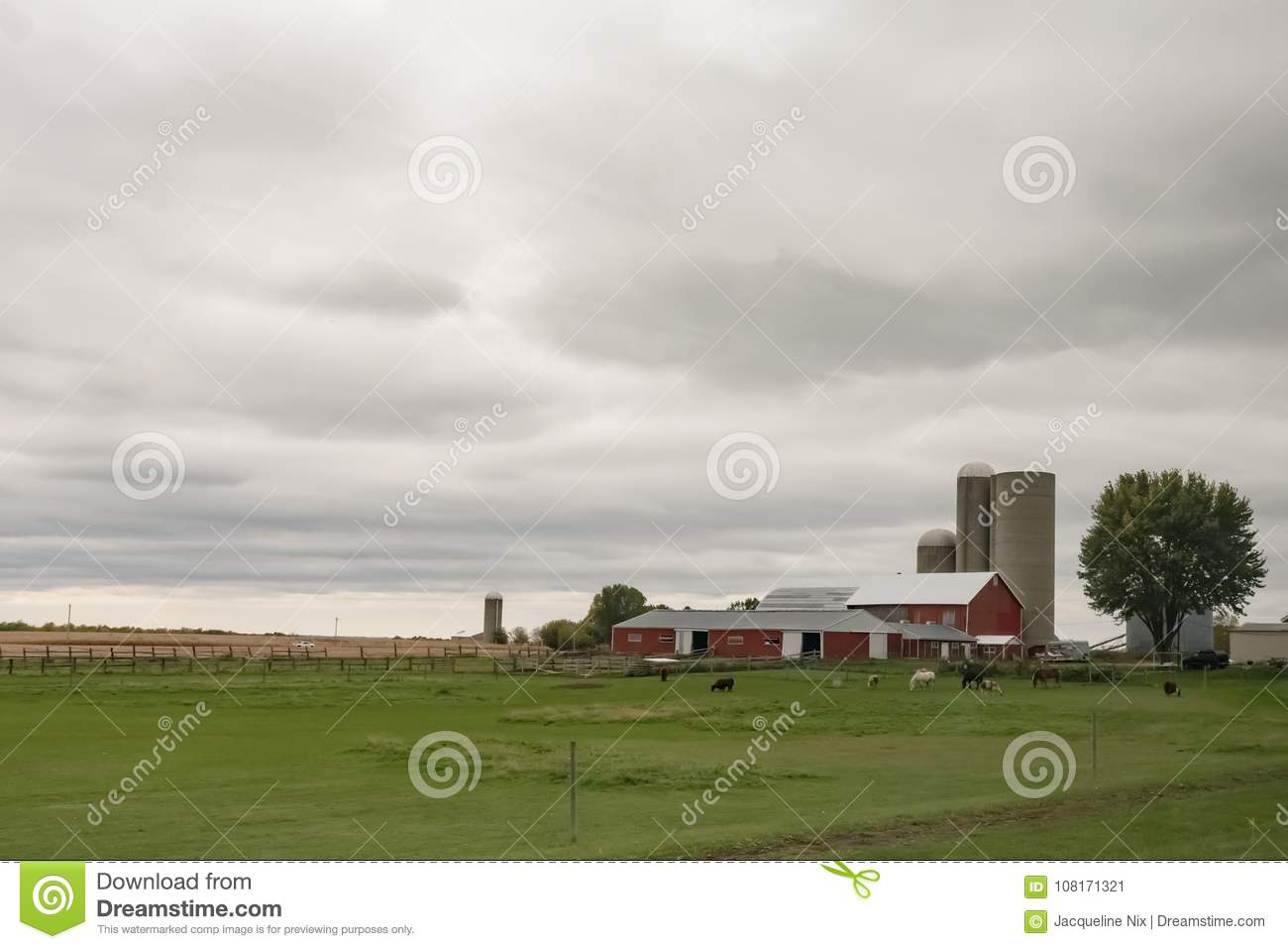 Download Dairy Farm Background Stock Image Of Countryside