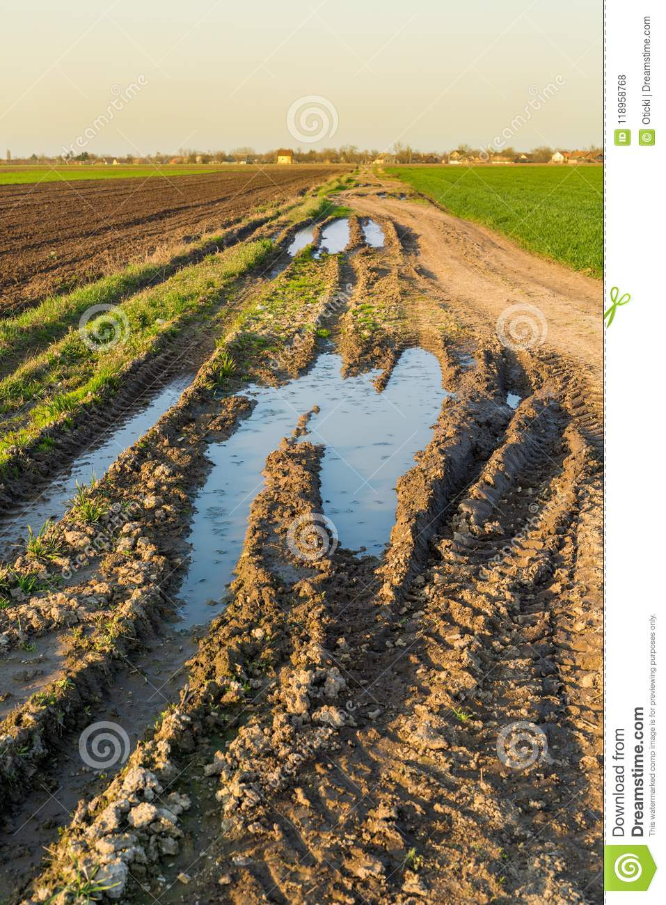 Agricultural Landsaple, Arable Crop Field Stock Photo