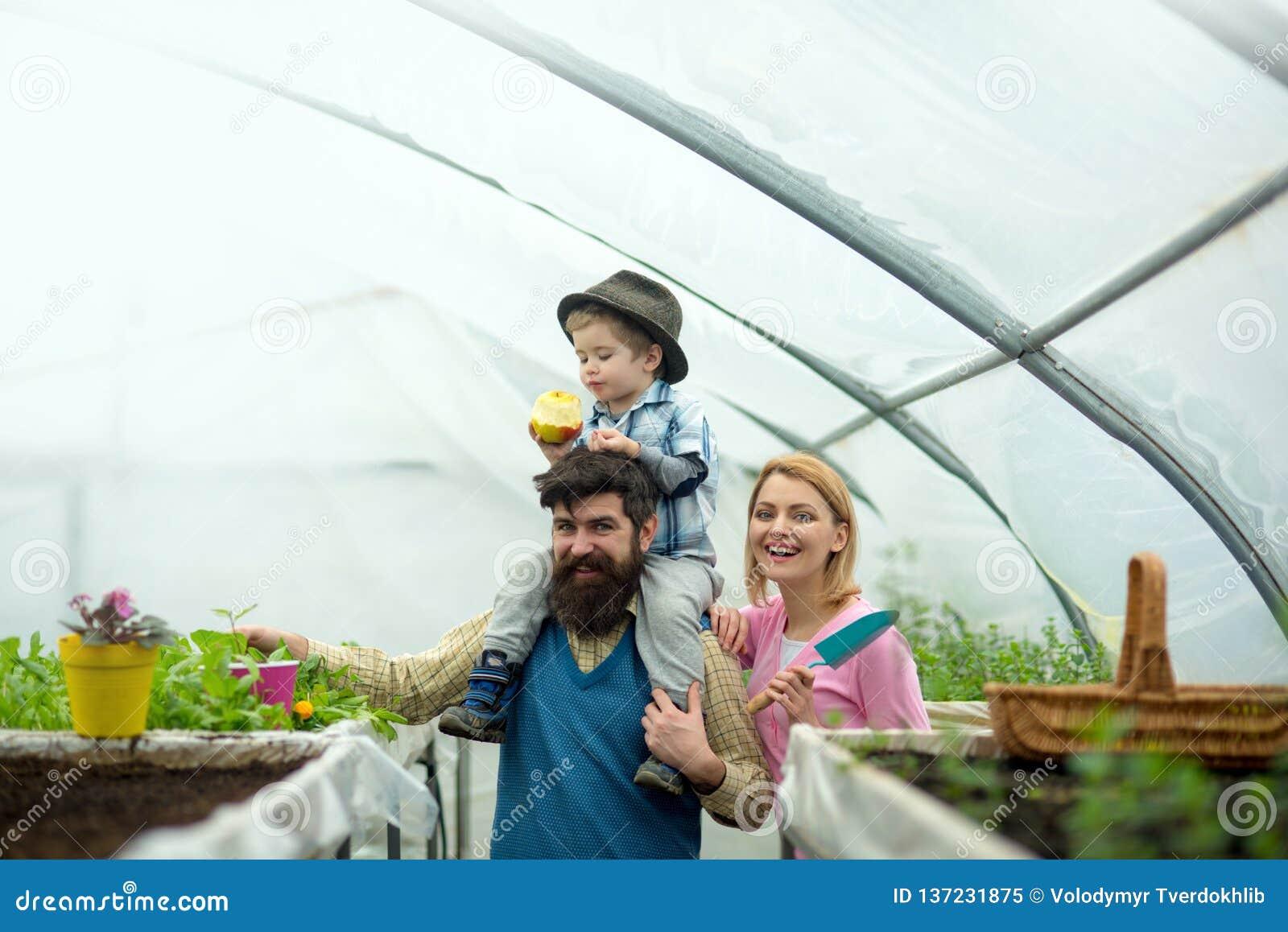 Agriculture de famille culture d agriculture de famille concept d agriculture de famille industrie d agriculture de famille dedan