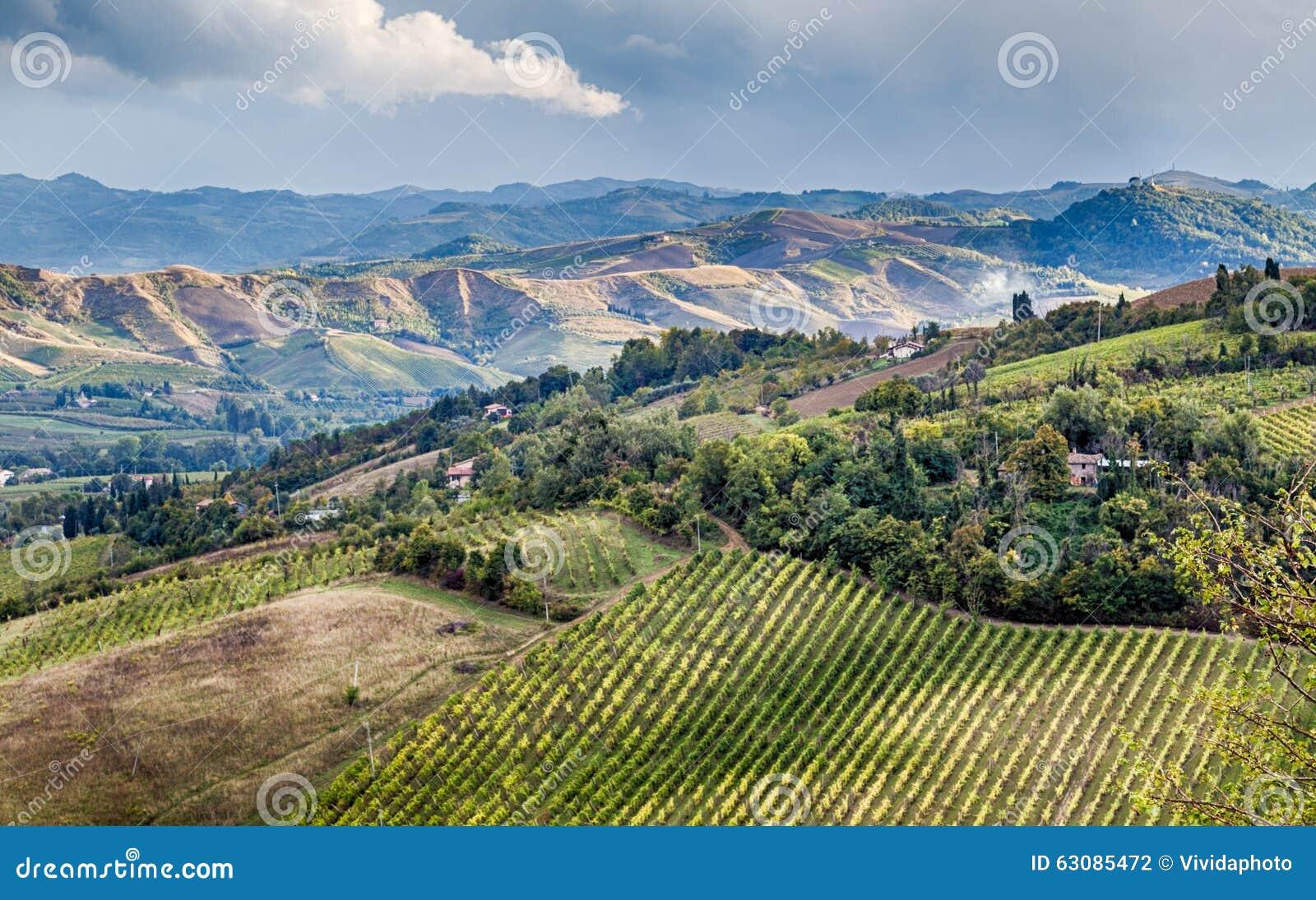 Download Agriculture Et Nature En Collines De Romagna Photo stock - Image du cyprès, agriculture: 63085472