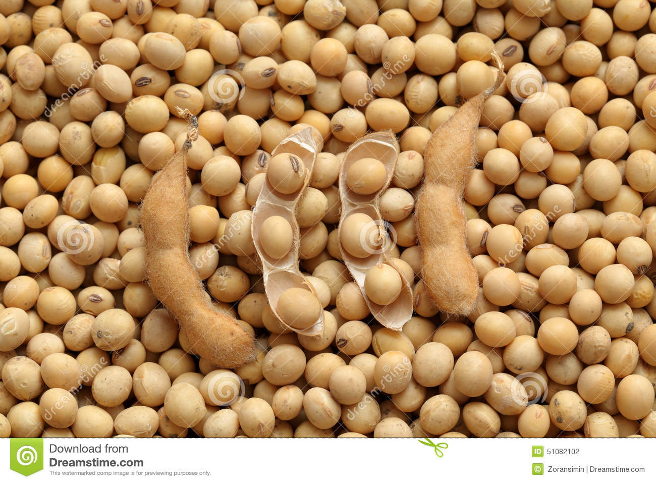 mr bean soya industry In june of 2014 the federal ministry of agriculture finalized a new five-year plan  for soybean production to the year 2020 the plan called for the soybean harvest .