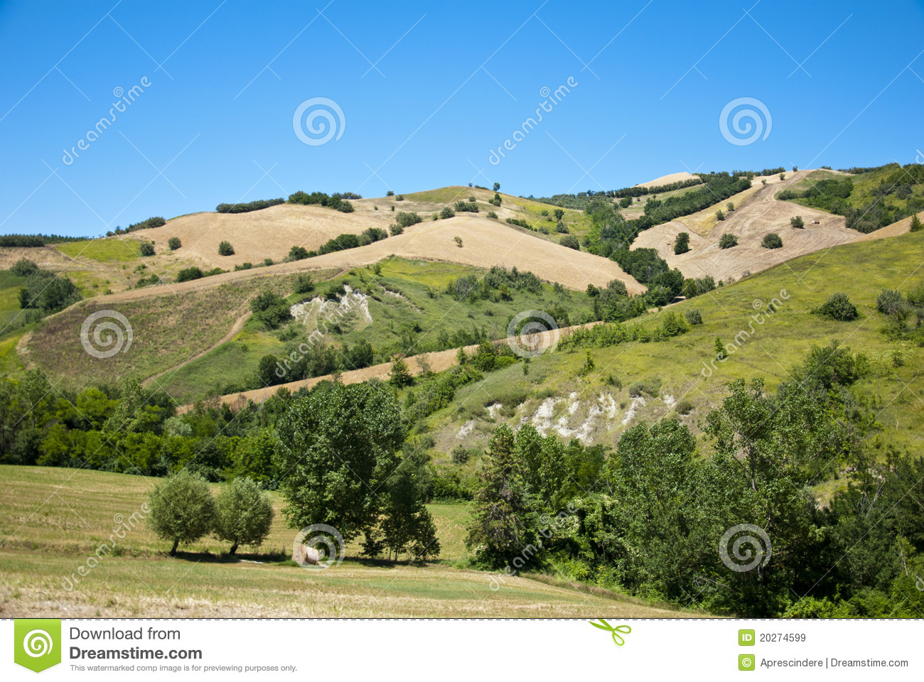 Agriculture In Tuscany - Italy Royalty Free Stock Images ...
