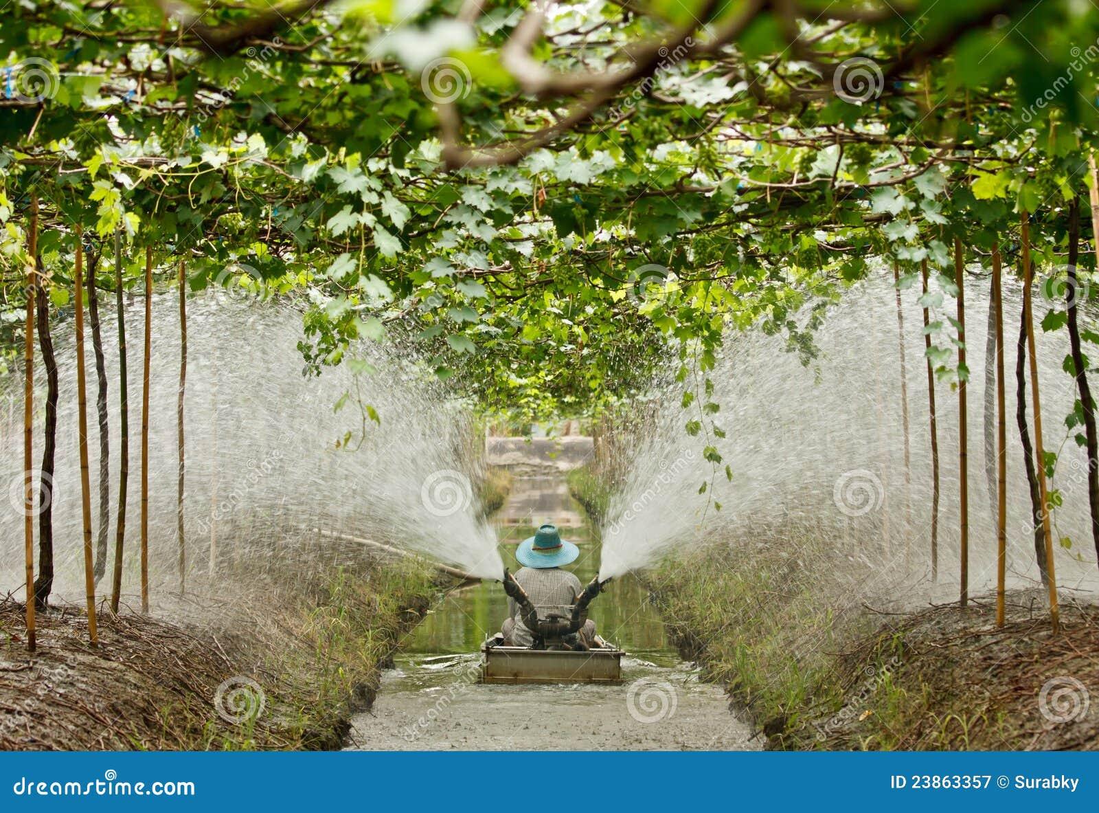 Agriculturist работает в саде