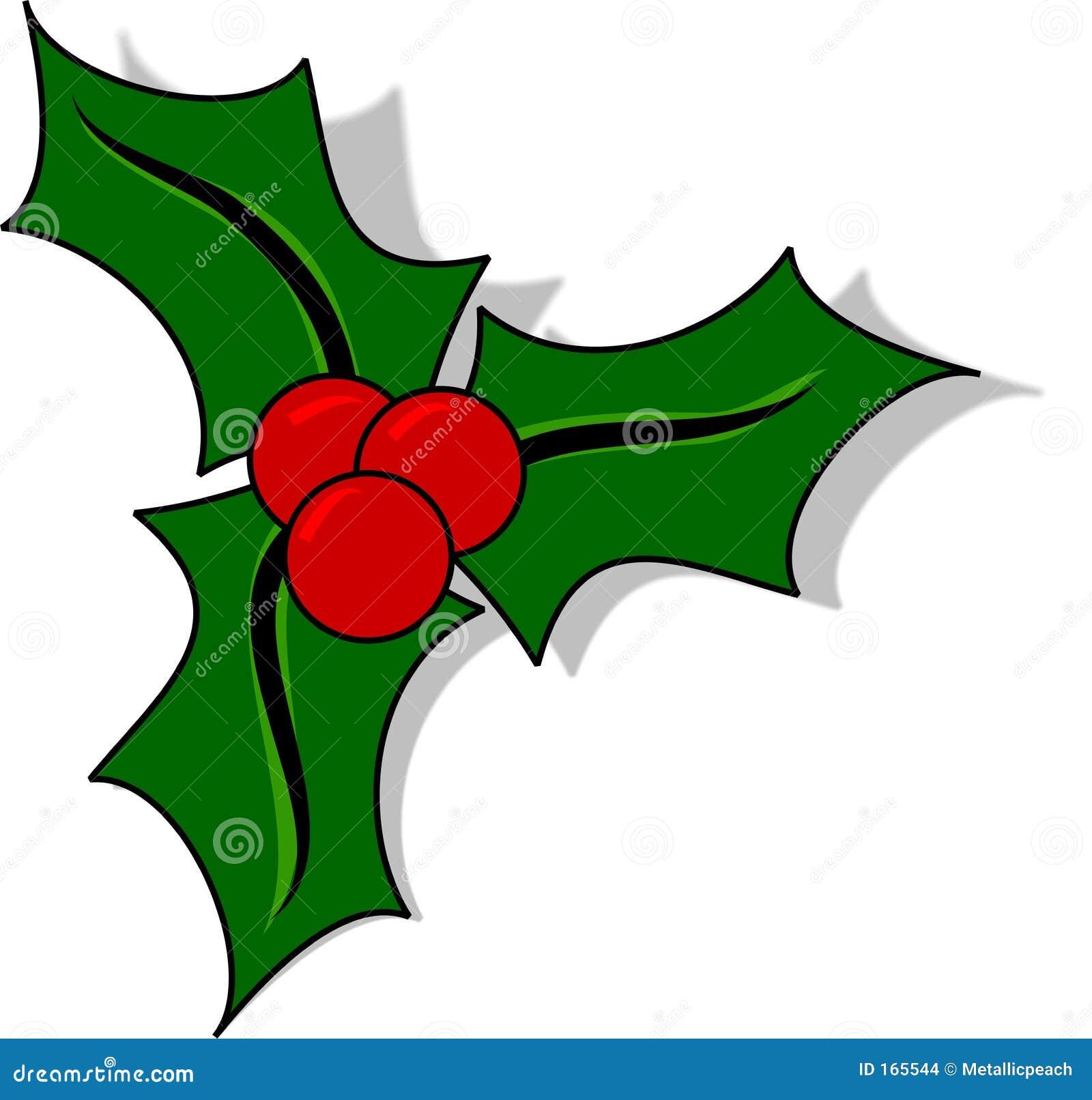 Immagini Agrifoglio Di Natale.Agrifoglio Di Natale Illustrazione Di Stock Illustrazione