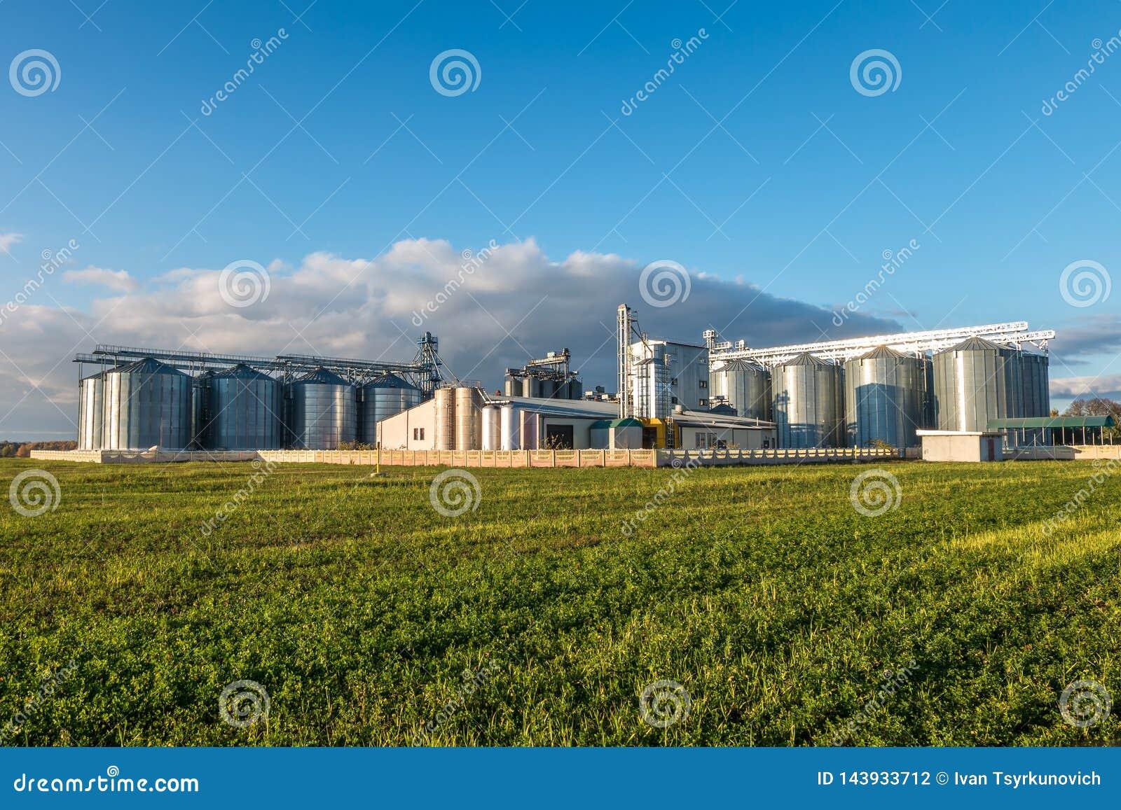Agro-verwerkt installatie voor verwerking en silo s voor het drogen het schoonmaken en opslag van landbouwproducten, bloem, graan