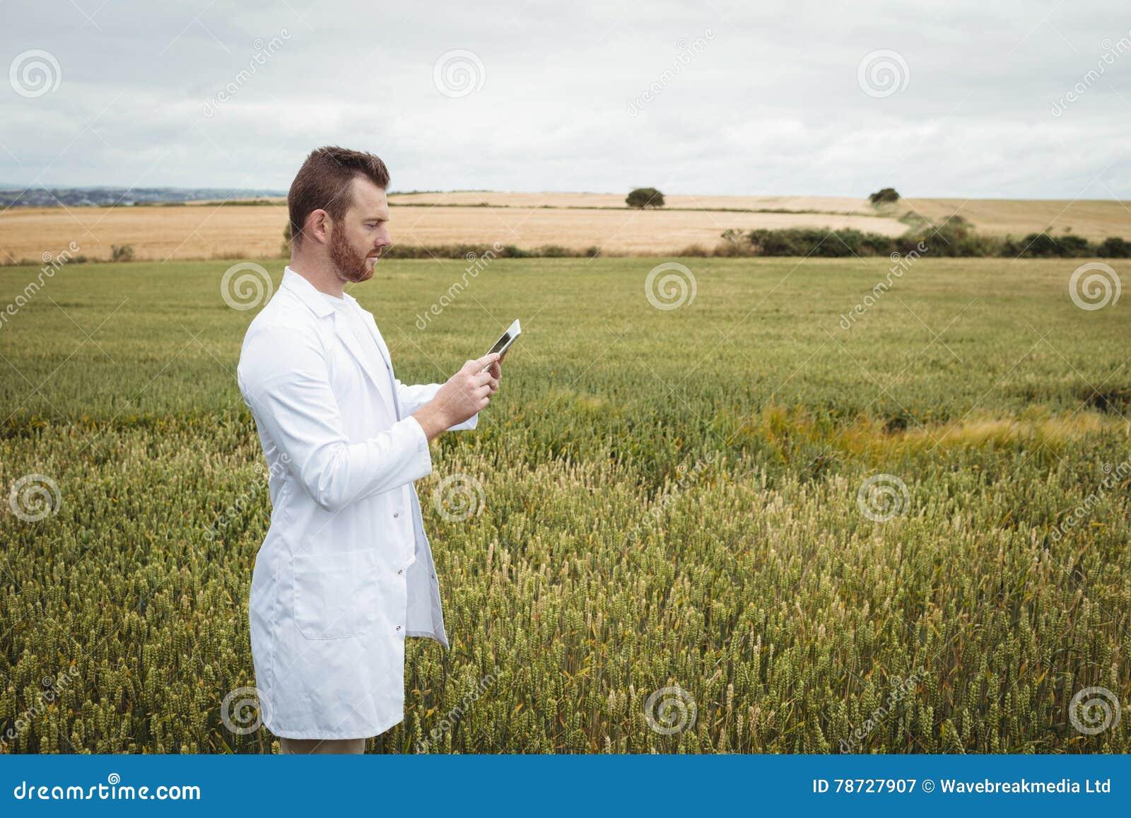 Agronom som använder den digitala minnestavlan i fältet
