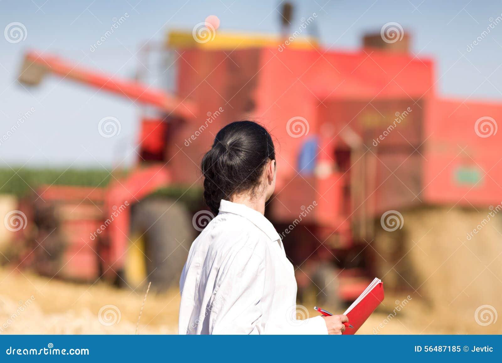 Agronome de femme dans le domaine de blé
