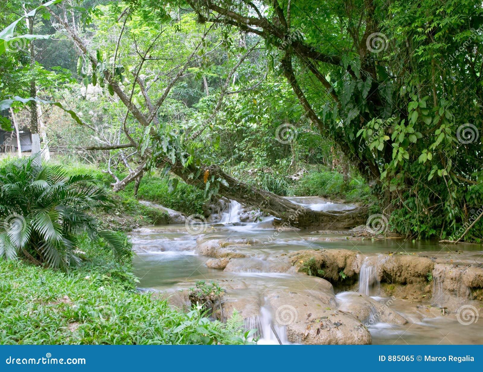Agua Azul Cascadas De Wodospadu