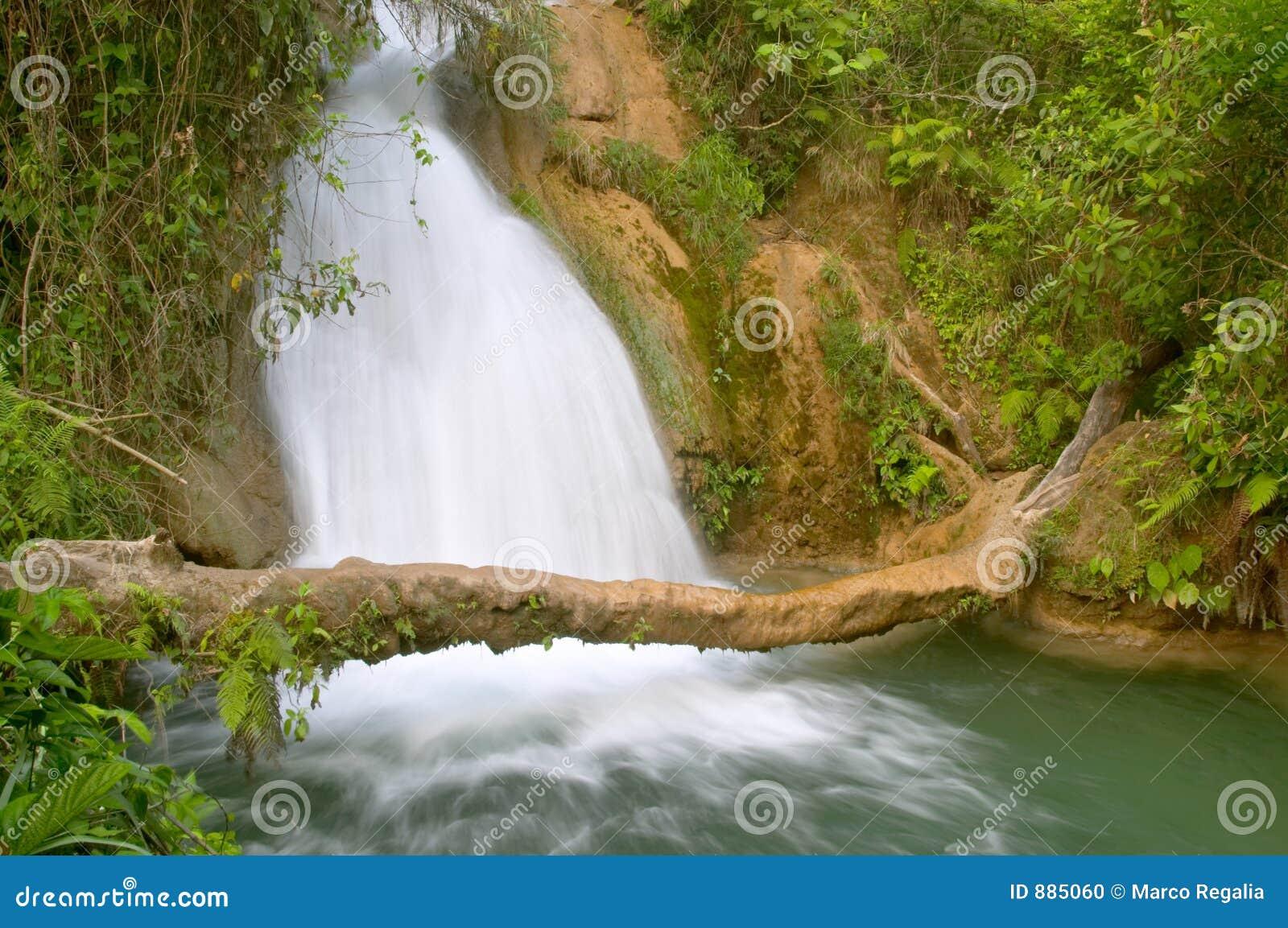 Agua azul wodospadu