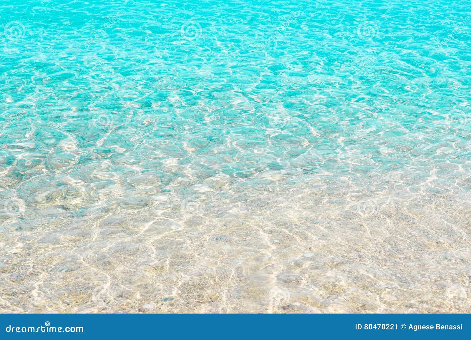 fondos de mar transparente - photo #6