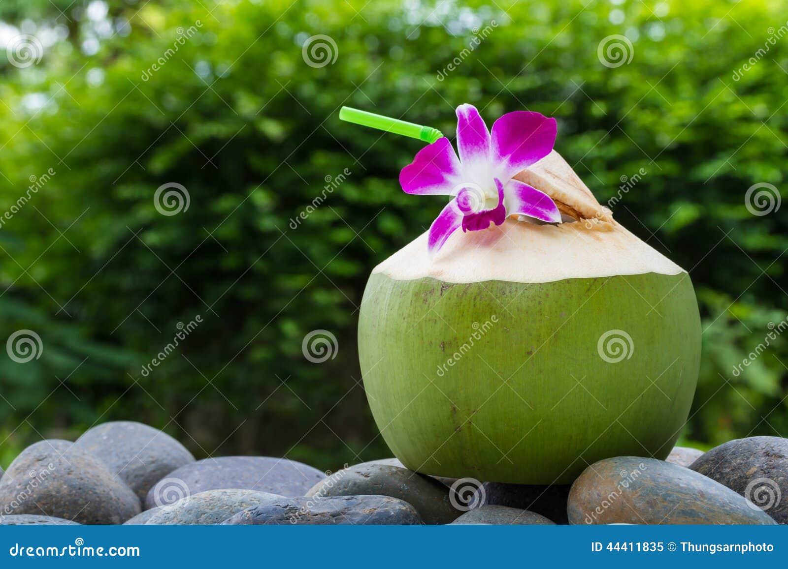 Agua del coco de la porción y adornamiento de la flor de la orquídea