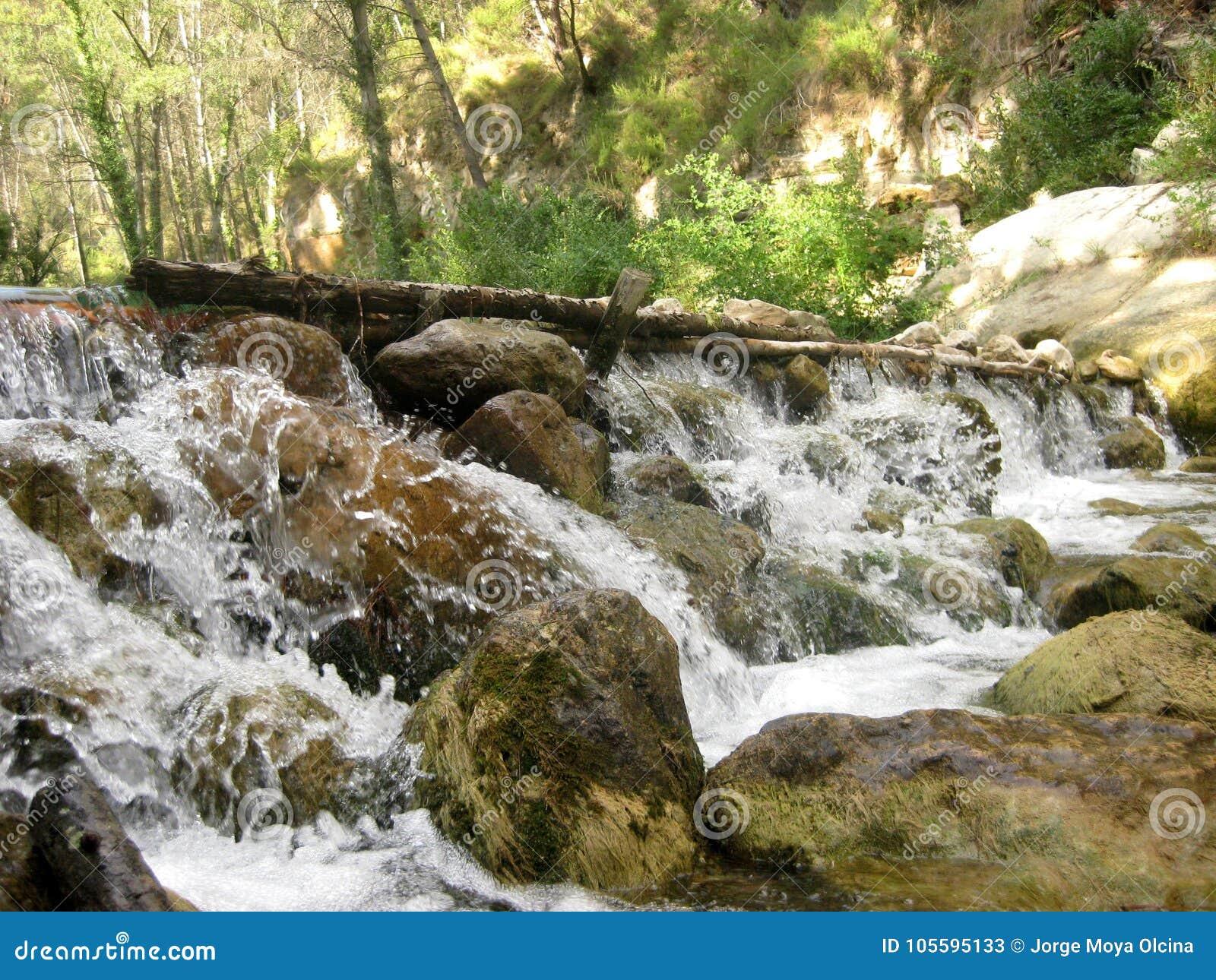 Agua salvaje de la cascada en el bosque profundo II