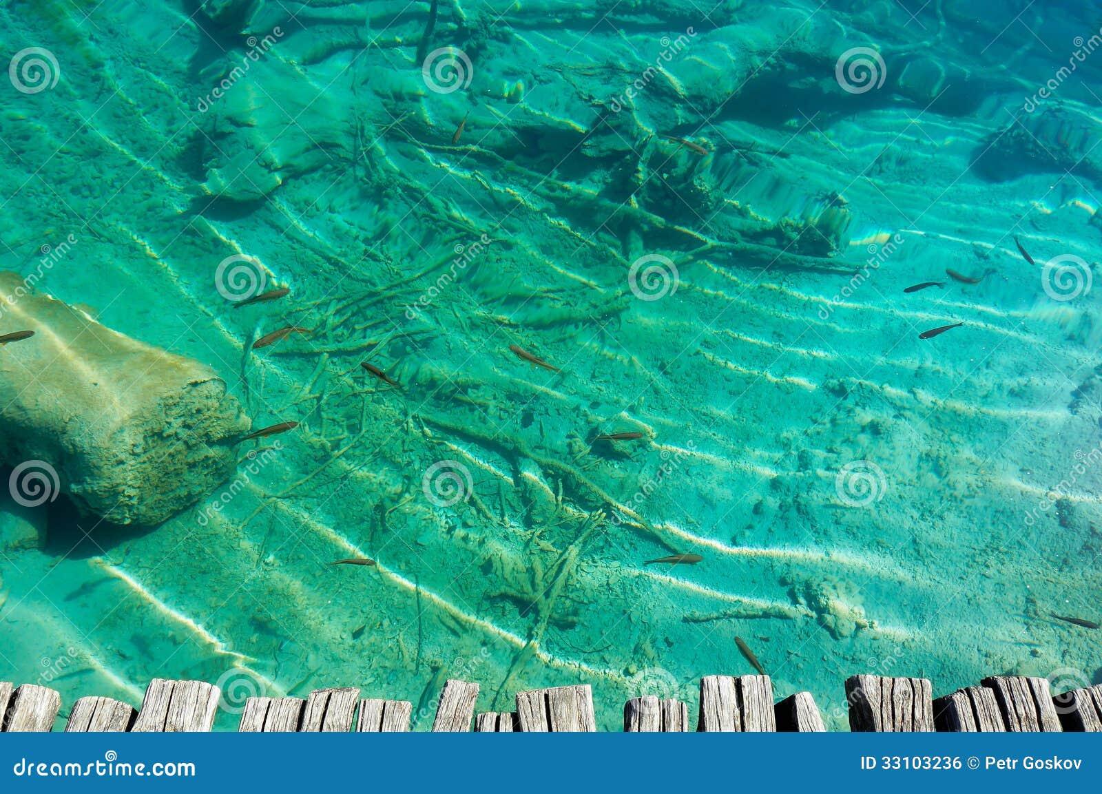 Agua transparente del lago con los pescados