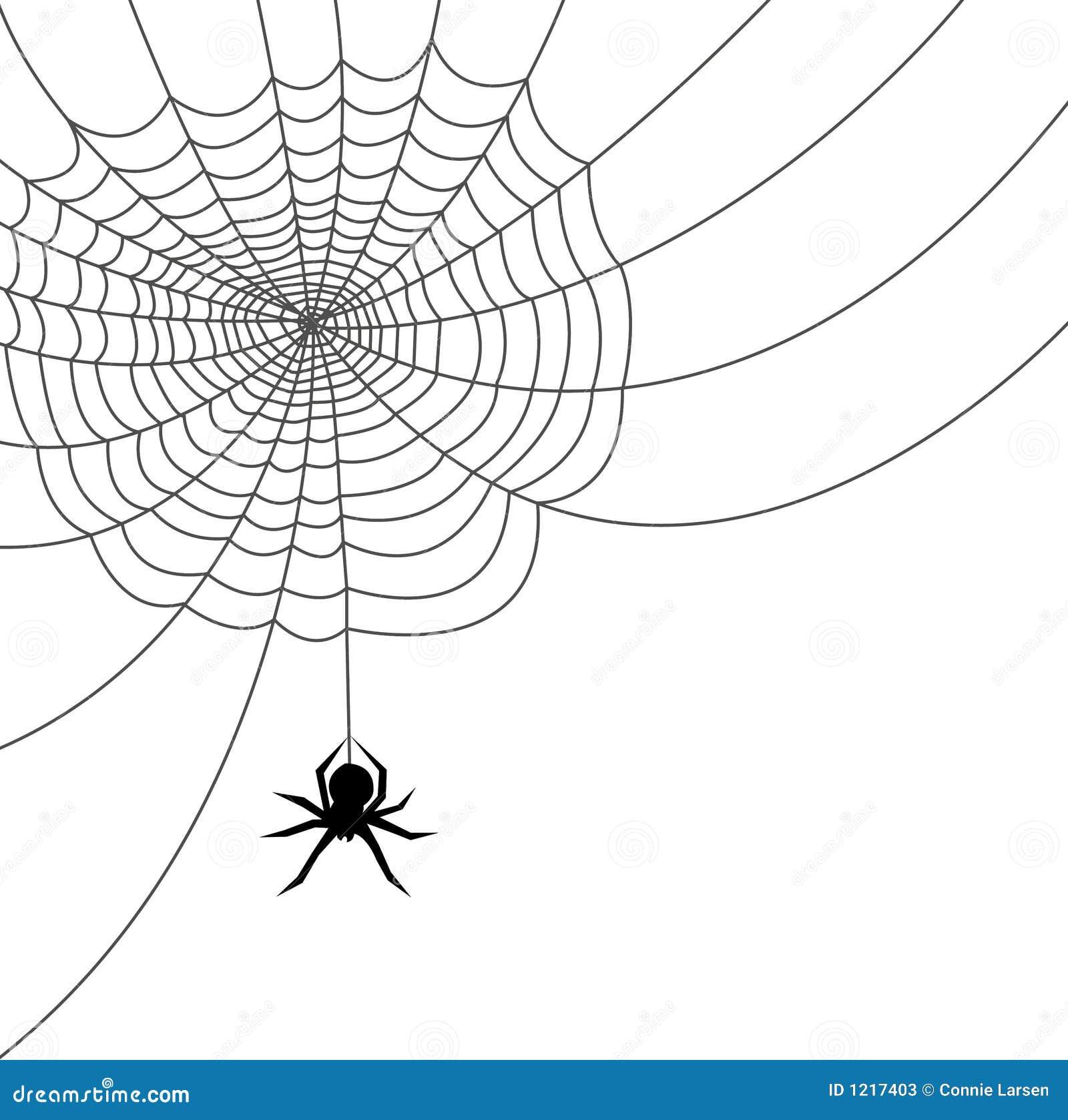 Ai文件蜘蛛网