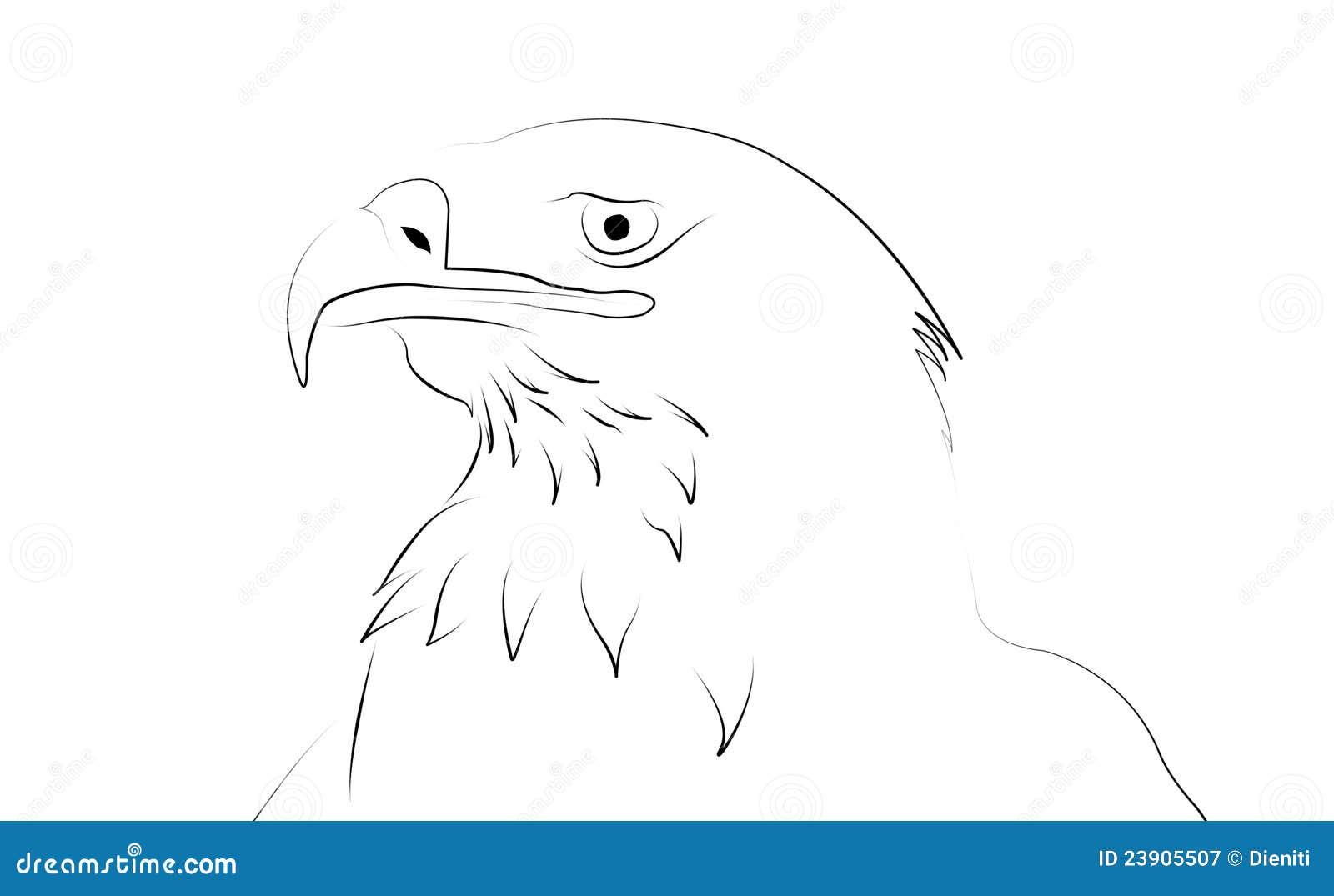 Aigle comme dessin au trait