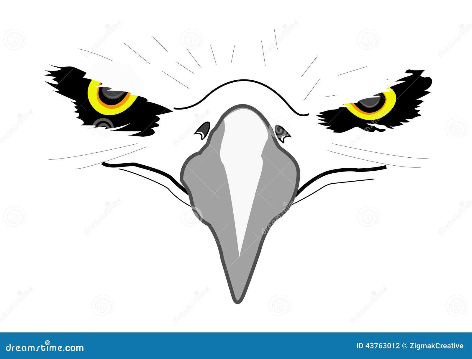 Aigle principal blanc